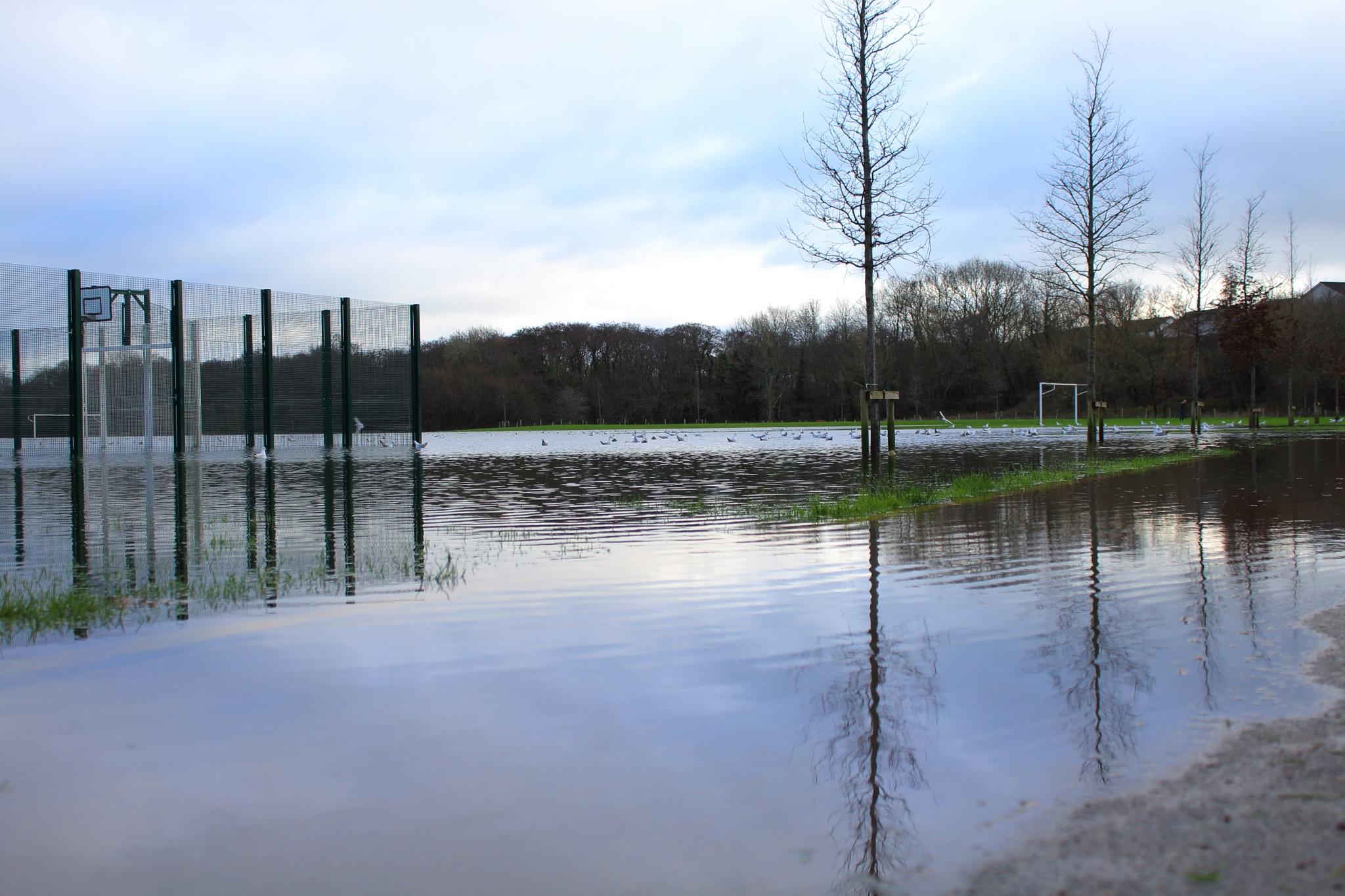 Flooded  by Loreta Tavoraite