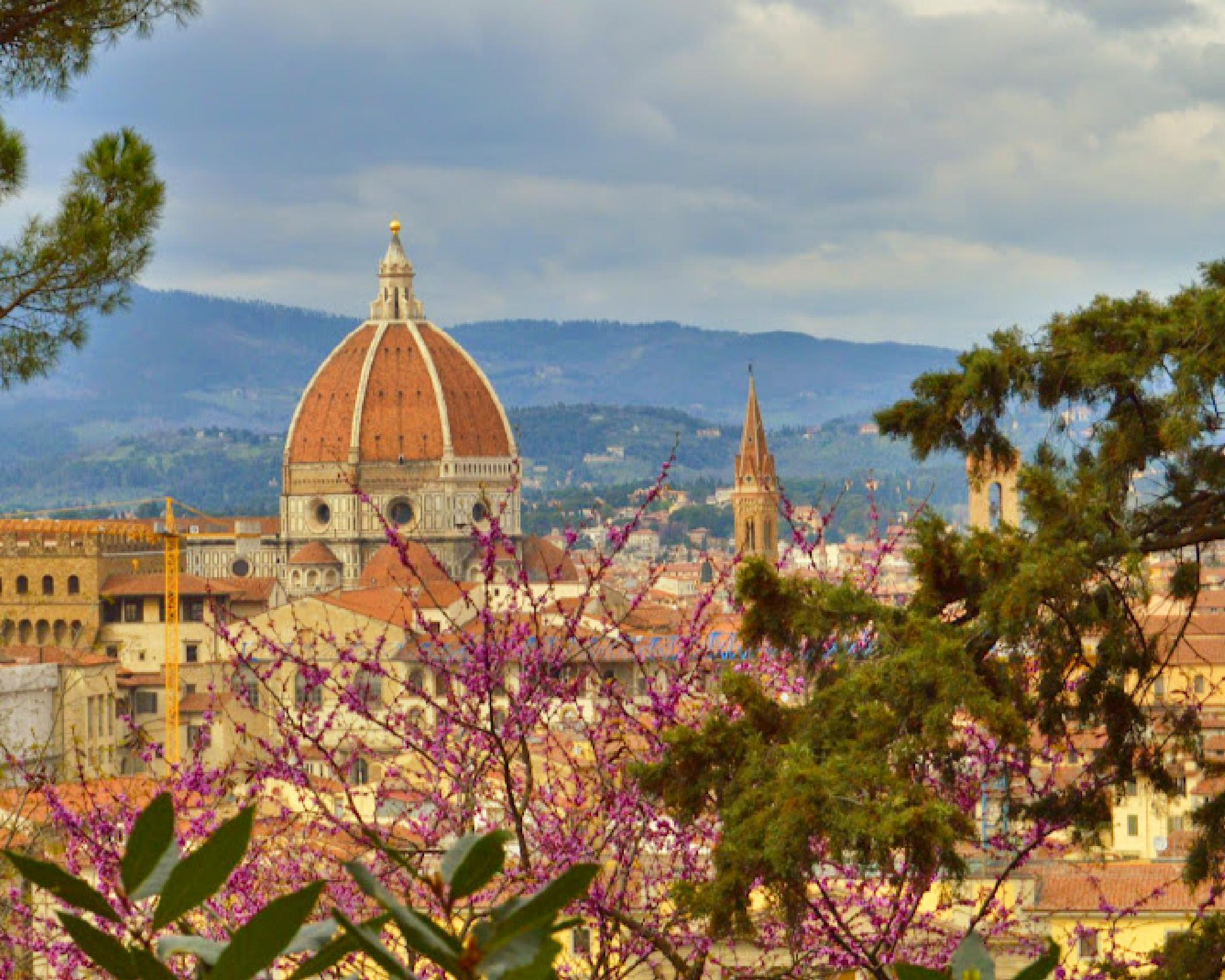 Spring in Florence by Ann Kristin