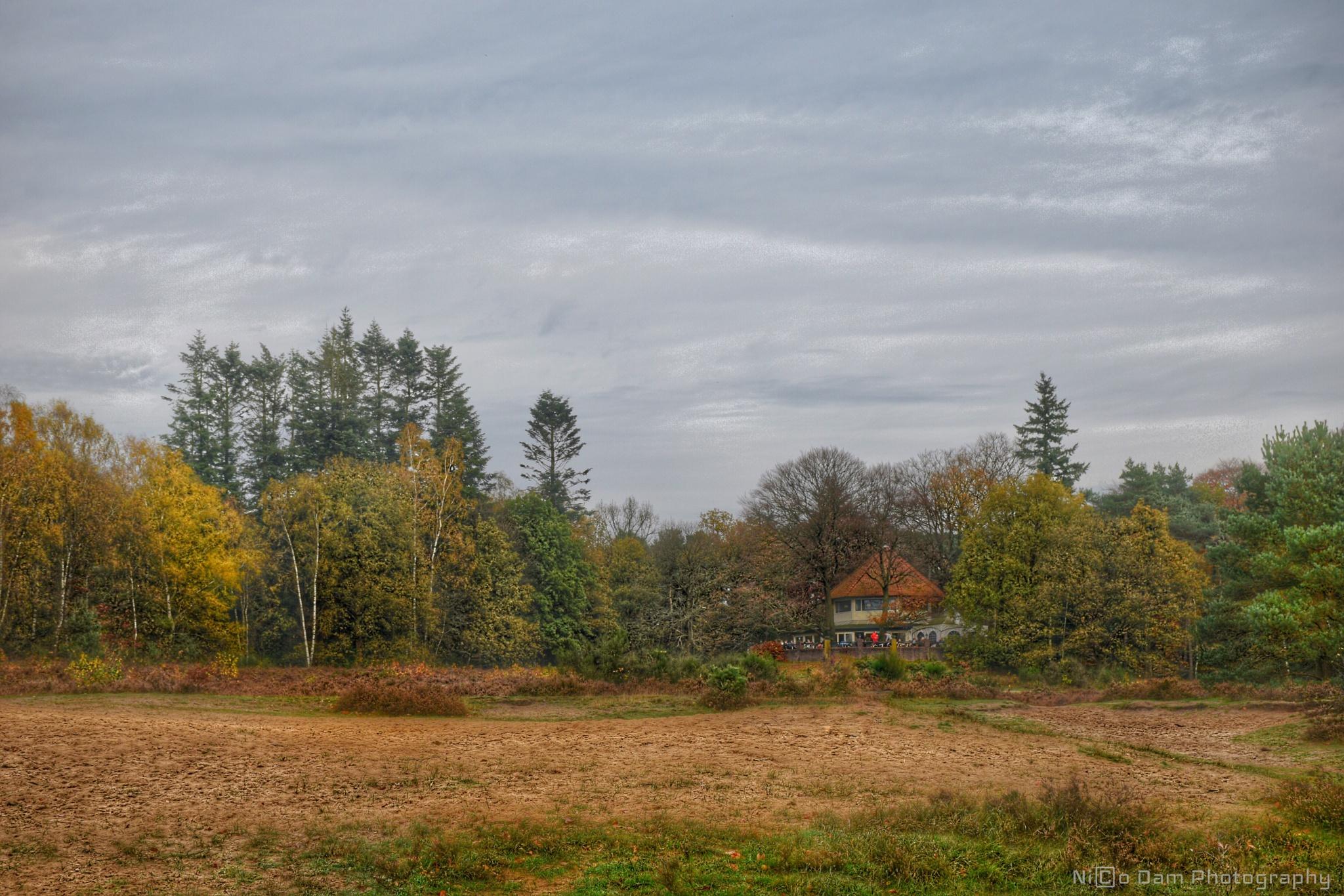 Utrecht Hill Ridge by Nico Dam