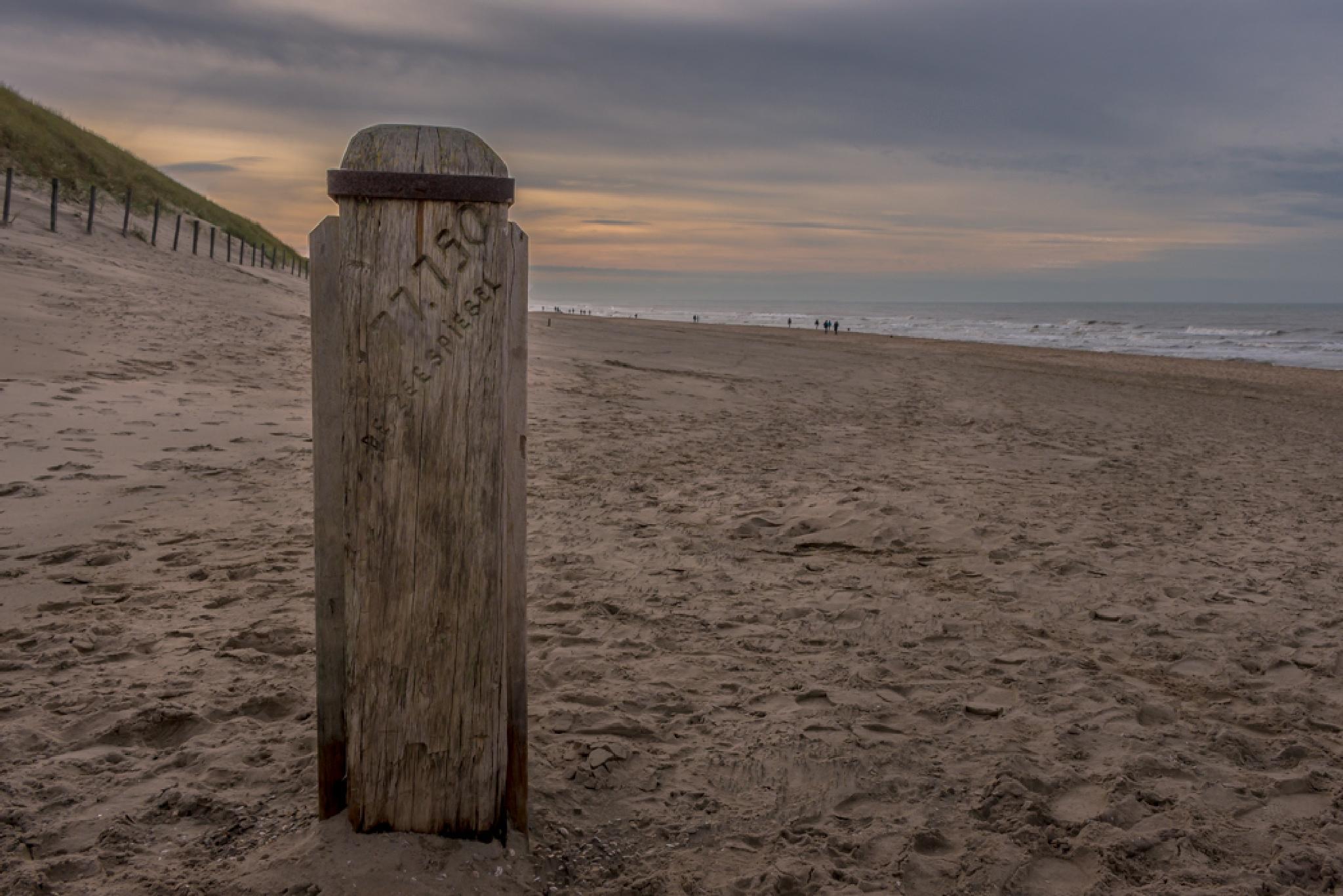 De Zeespiegel by Johan Viele