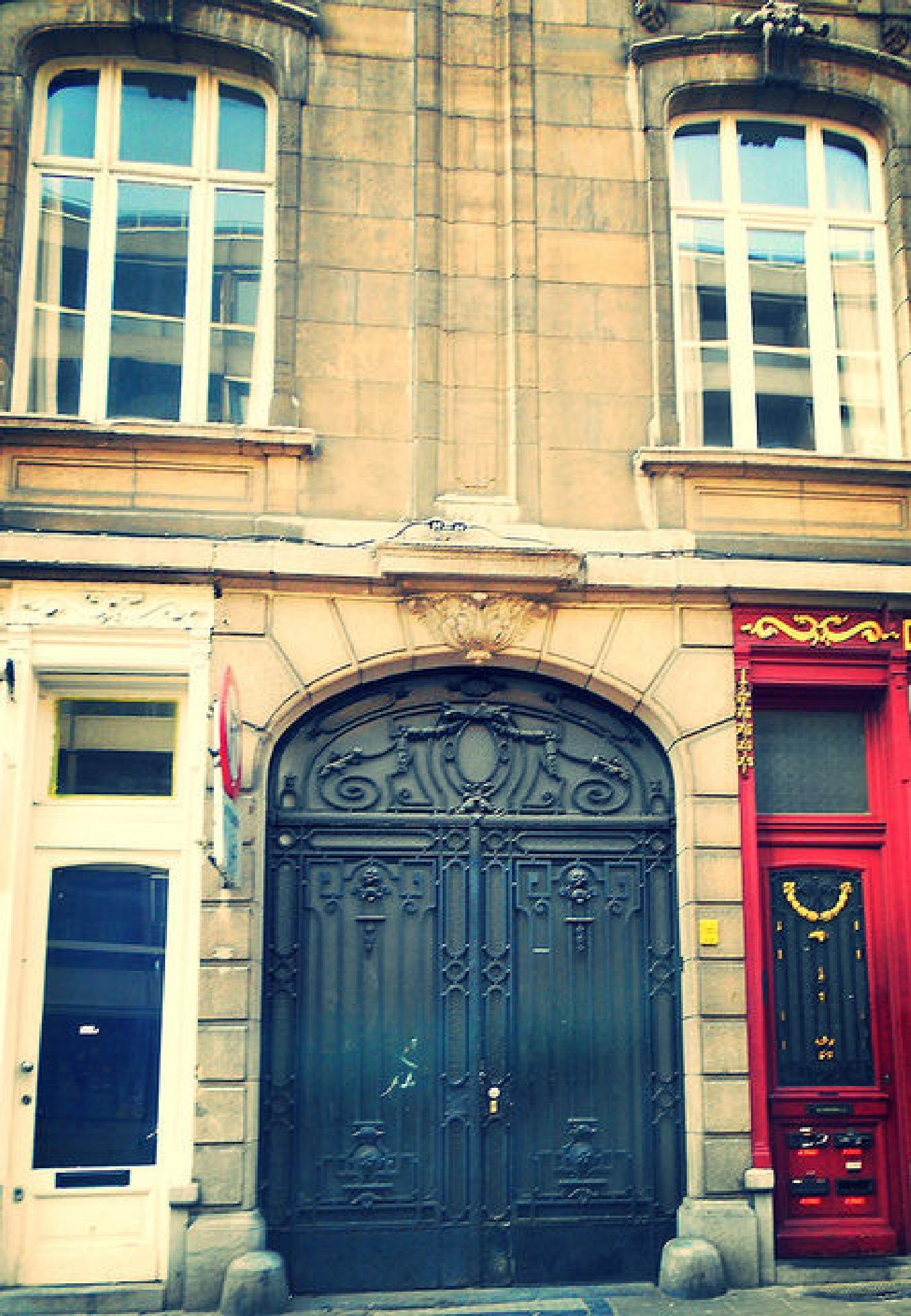 Antwerp doors by ann van aken