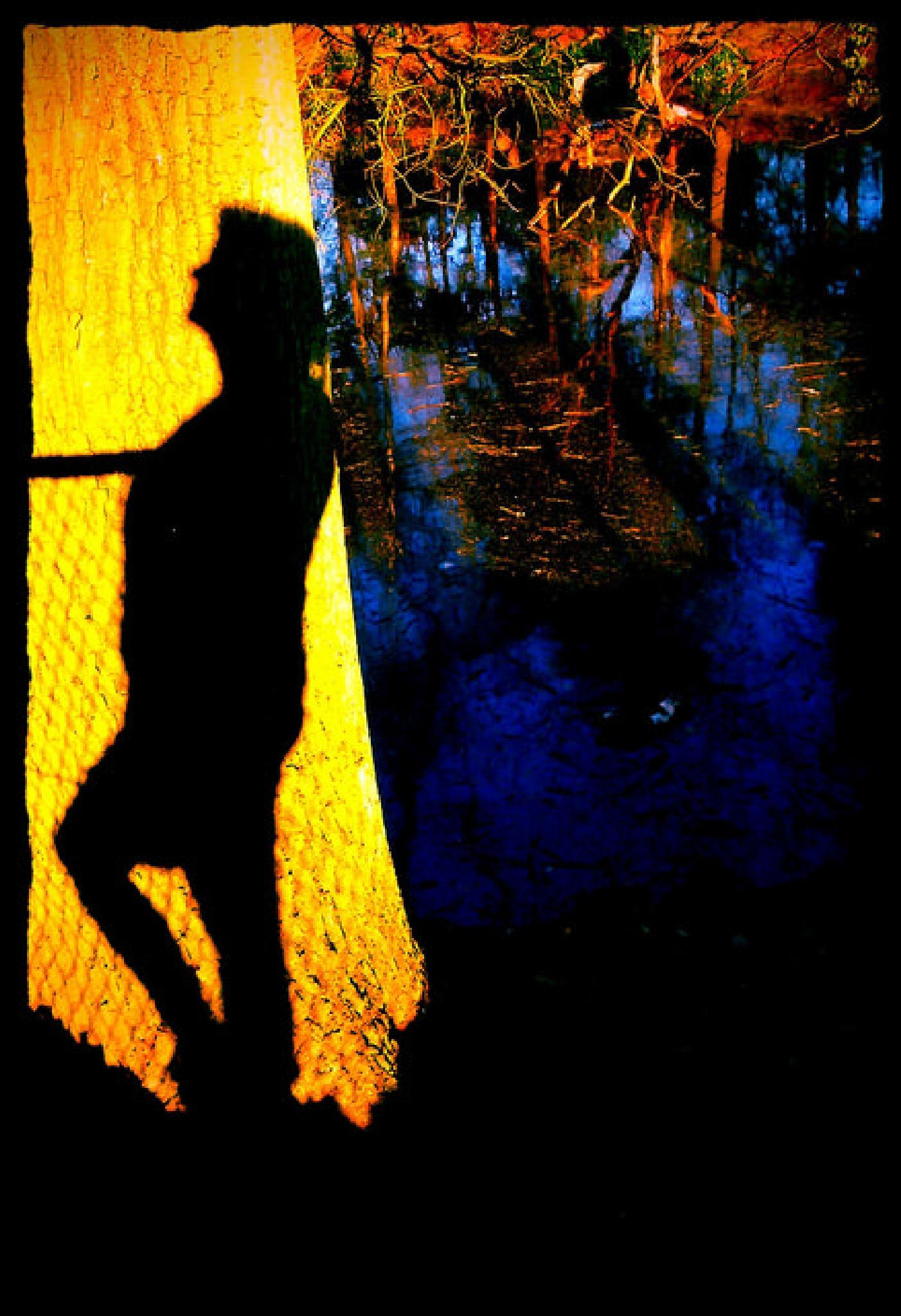 sunny shadow by ann van aken