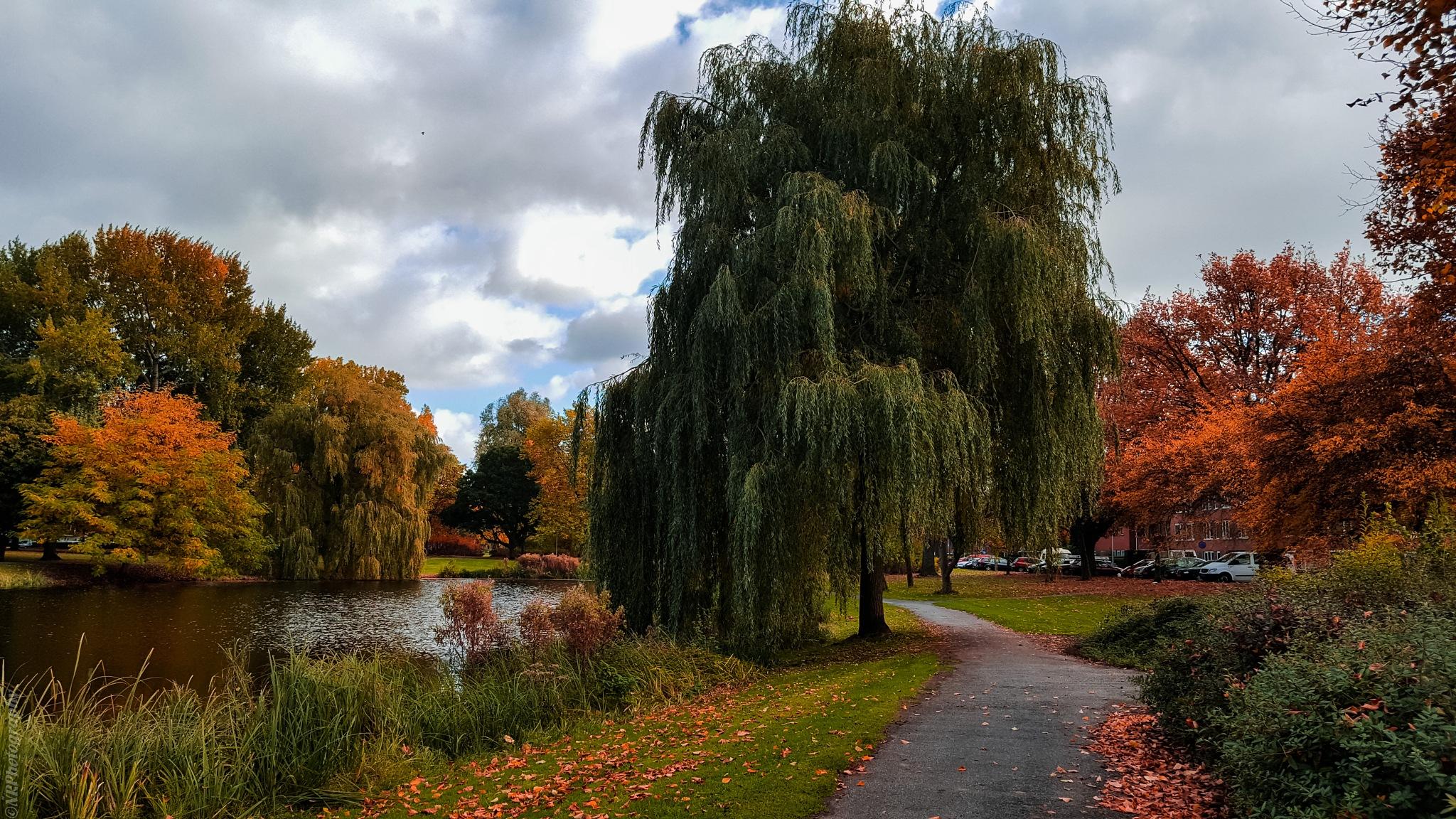 Ik hou van de herfst... by NiaR