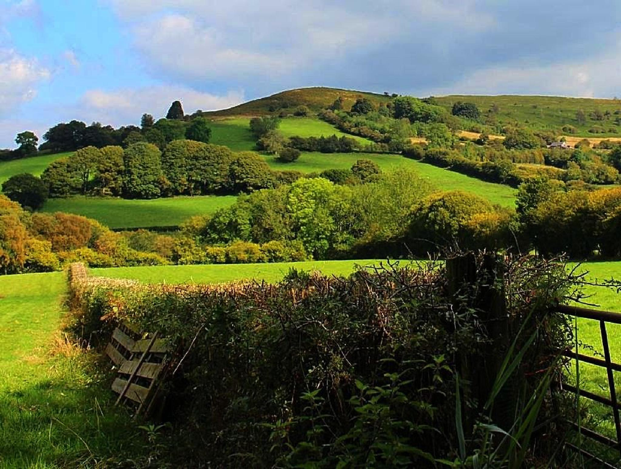 Near Crickhowell in Monmouthshire, Wales by ralph.cook2