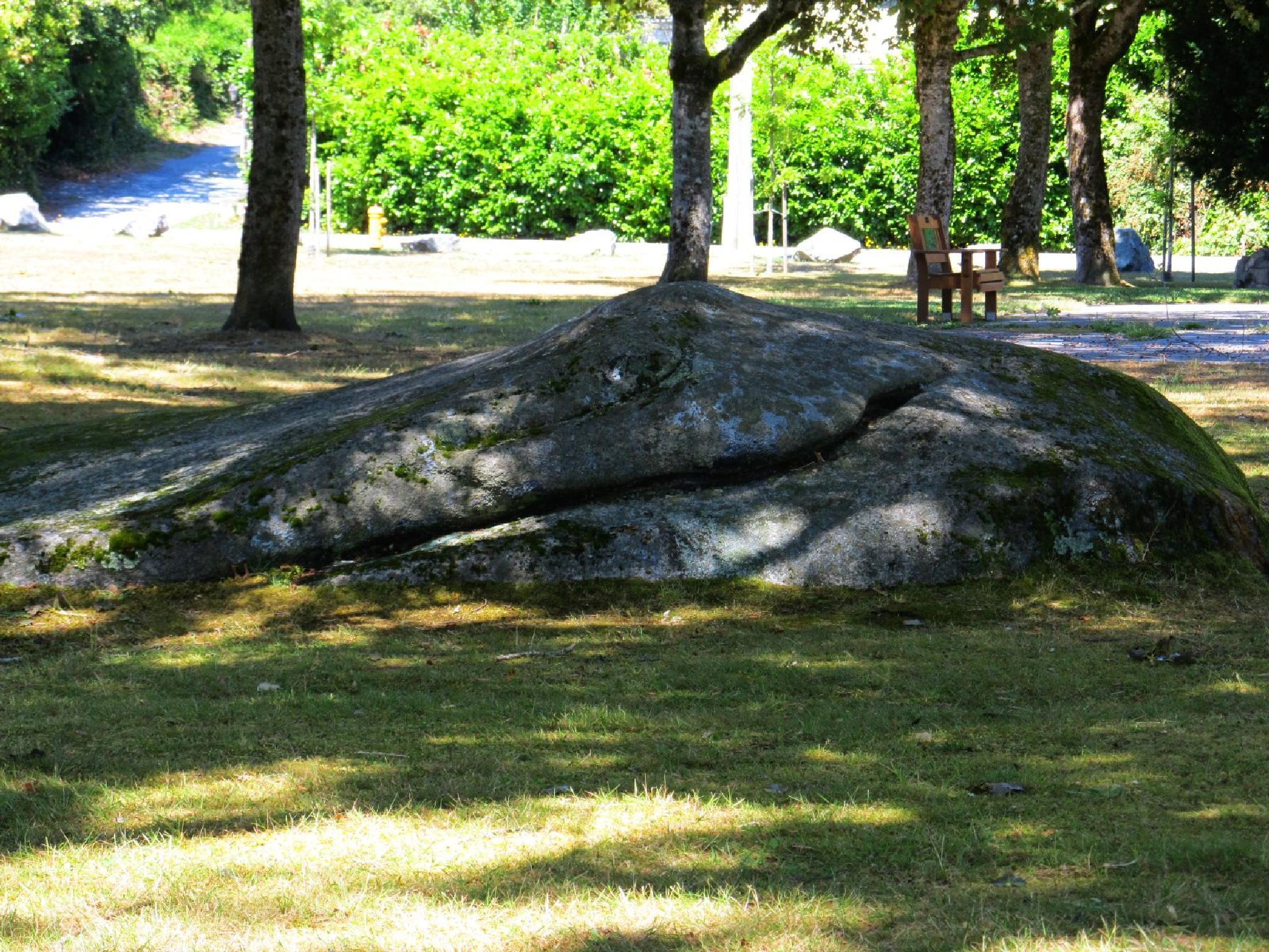 Crocodile Rock by Ruth Moore