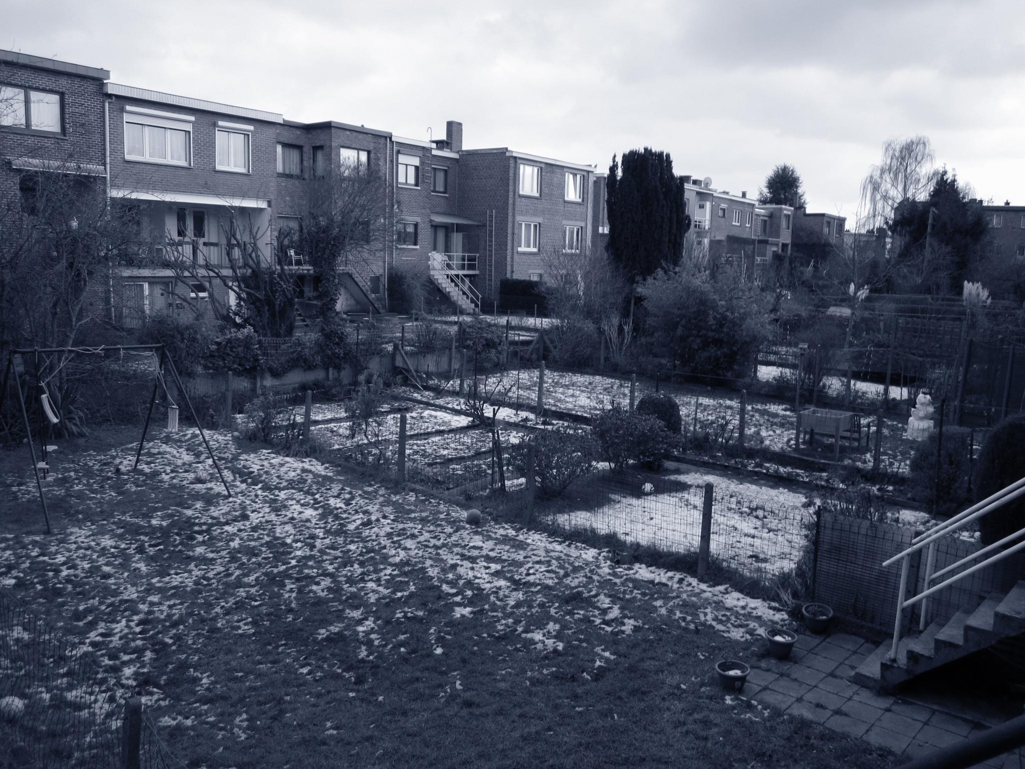 Début d'hiver by jplognoul
