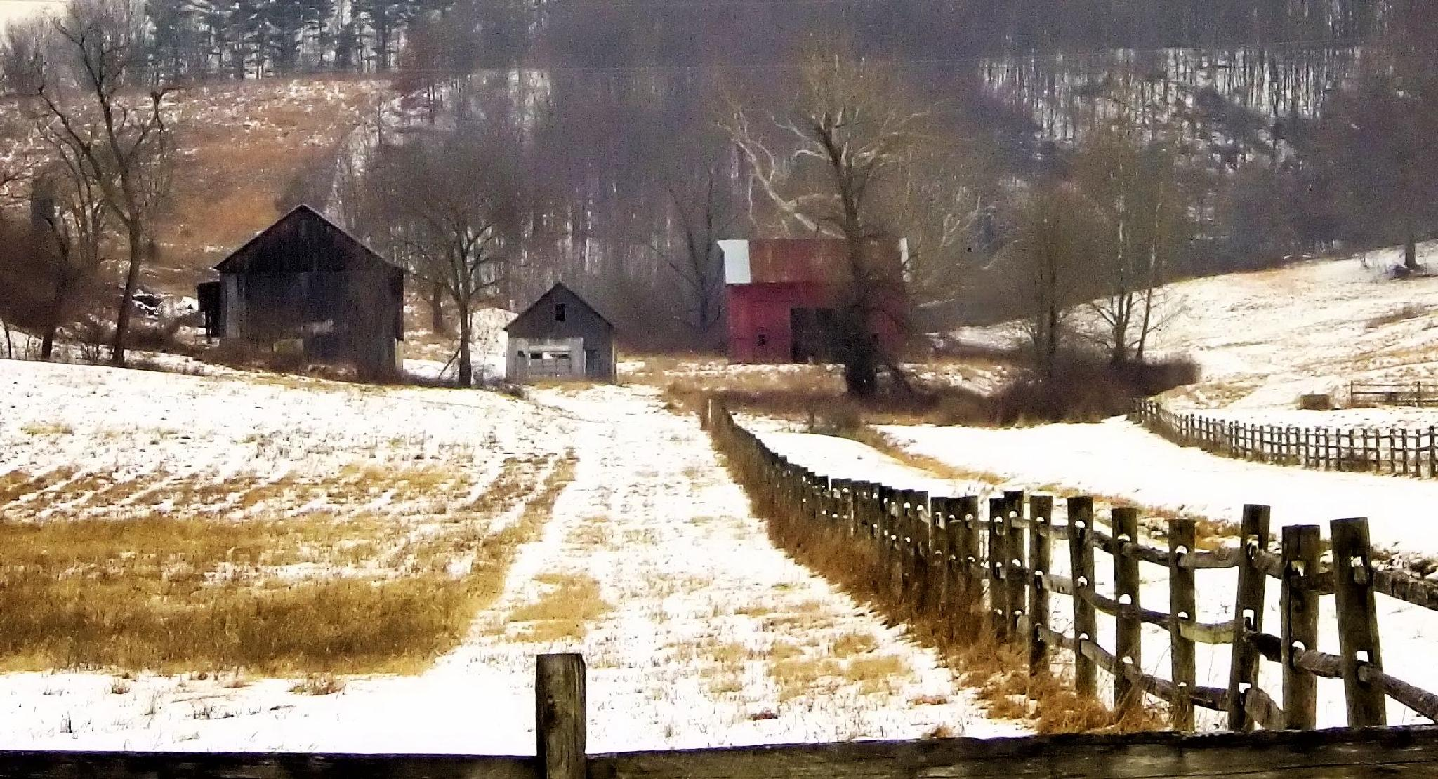 Winter on the farm by Kathy
