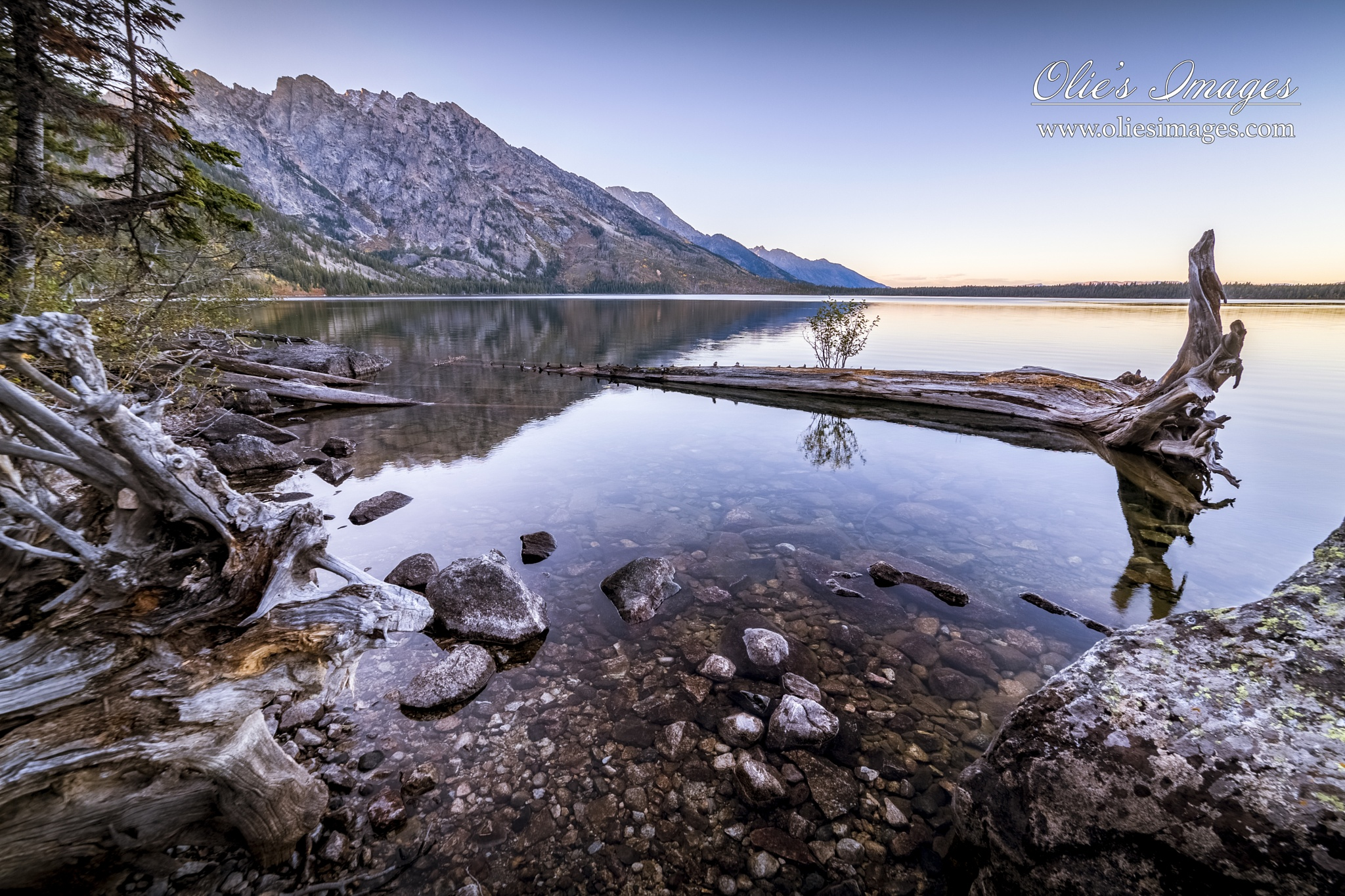 Reflections by Olie's Images