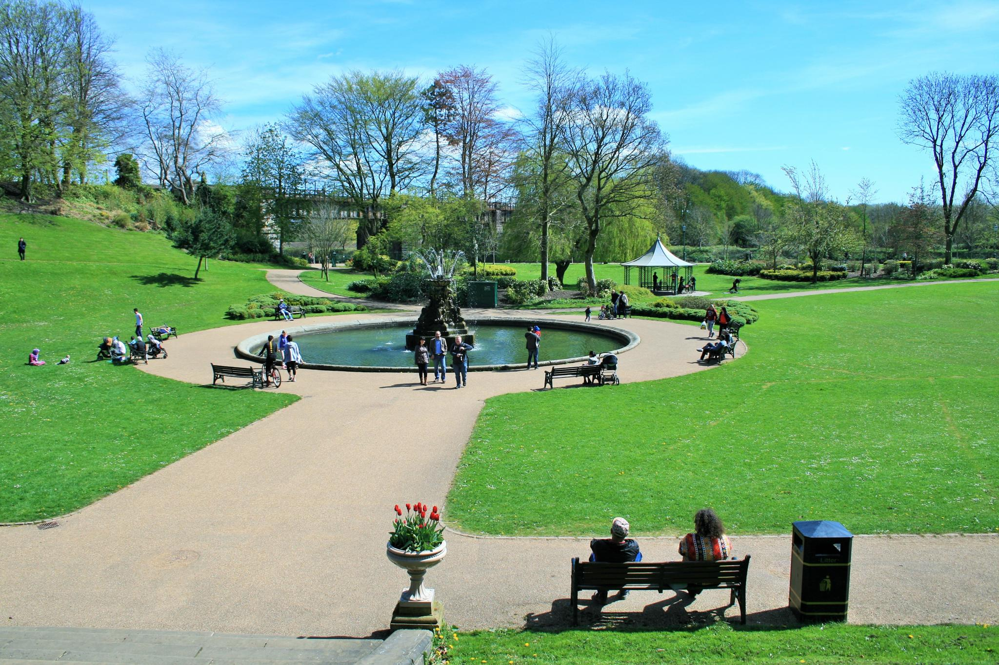 Park Life by Geoffrey Ackers