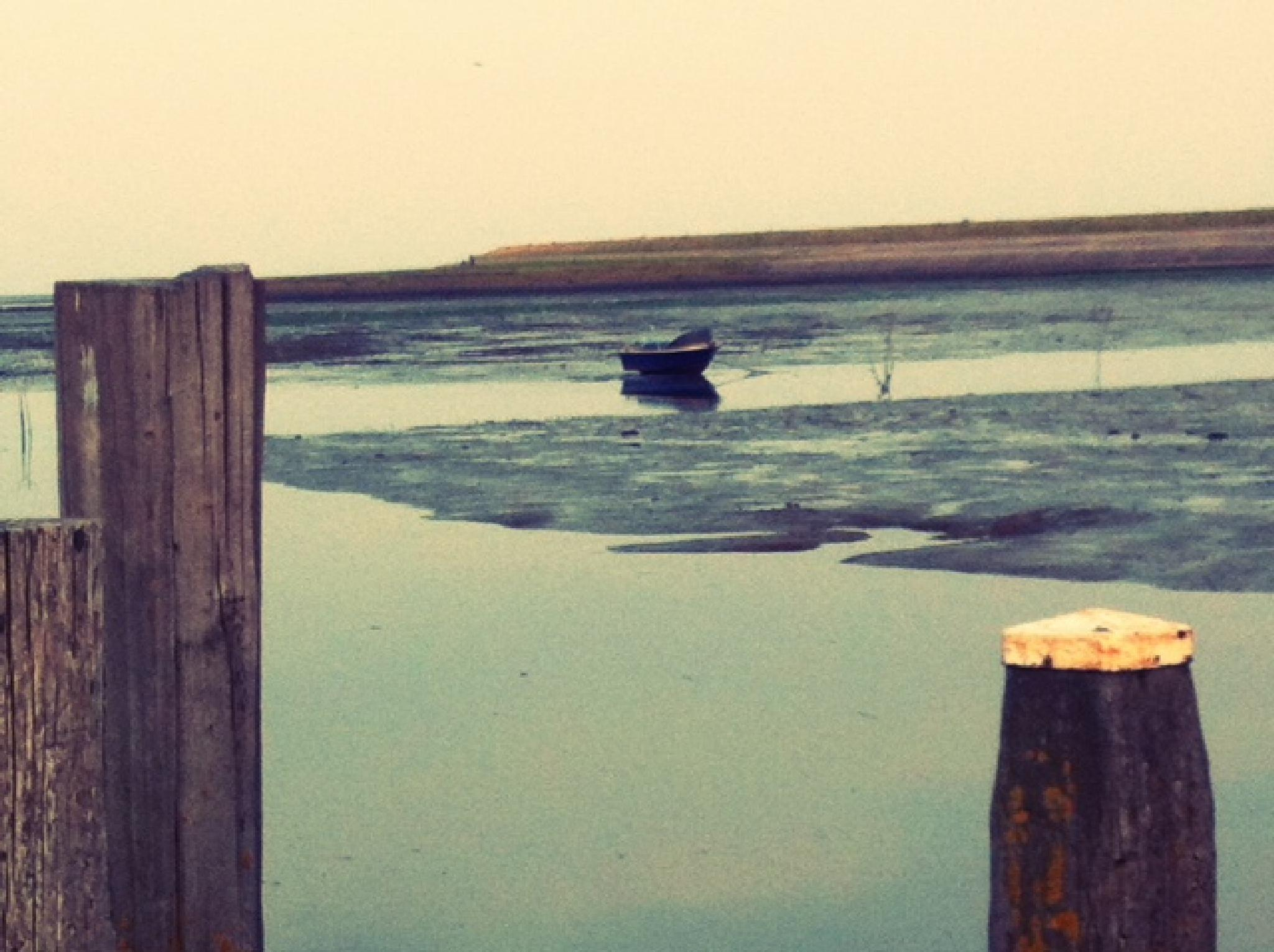 Isle of Texel, Netherlands, by Iphone by patrick vischschraper