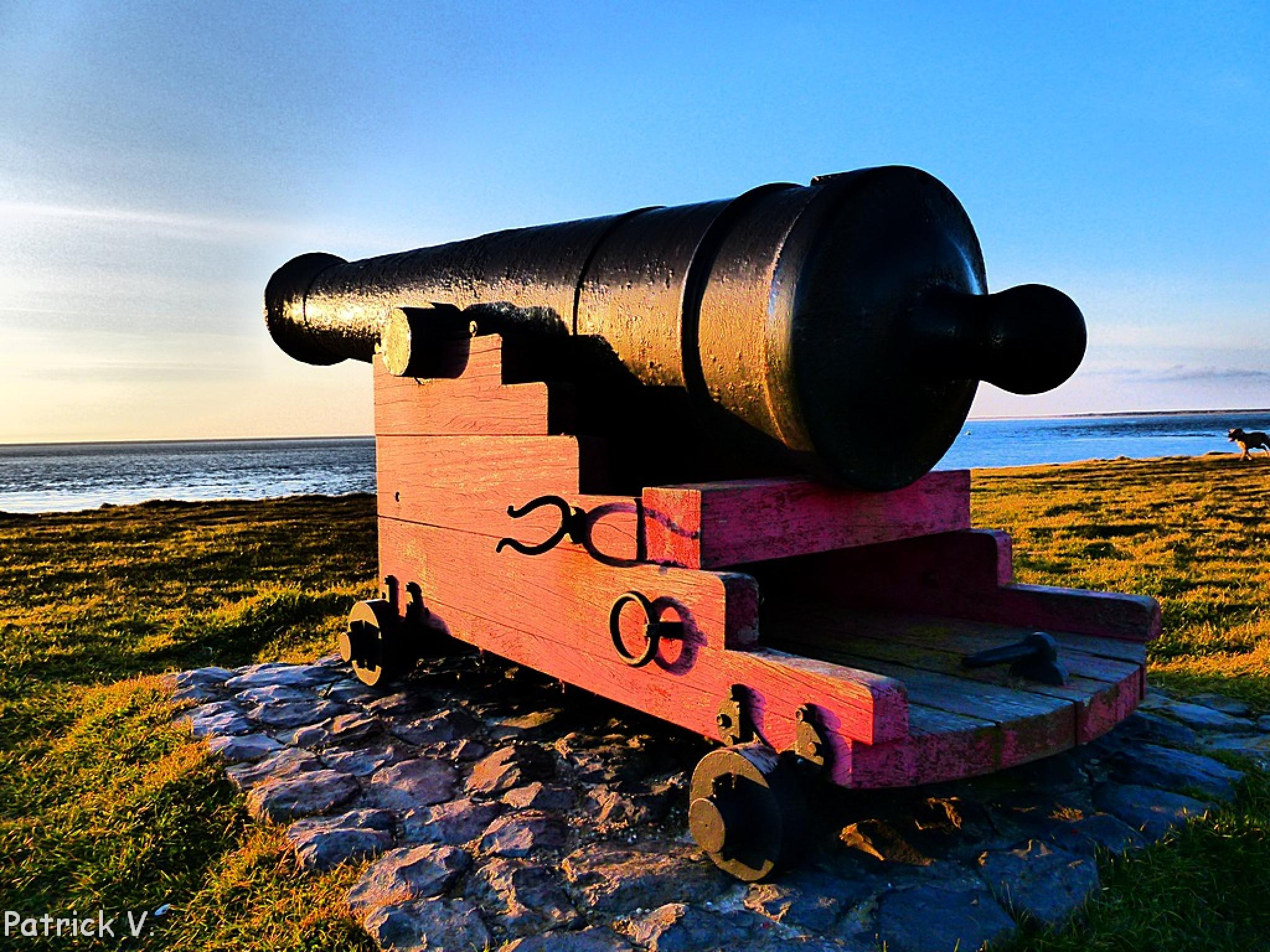 Cannon with seaview by patrick vischschraper