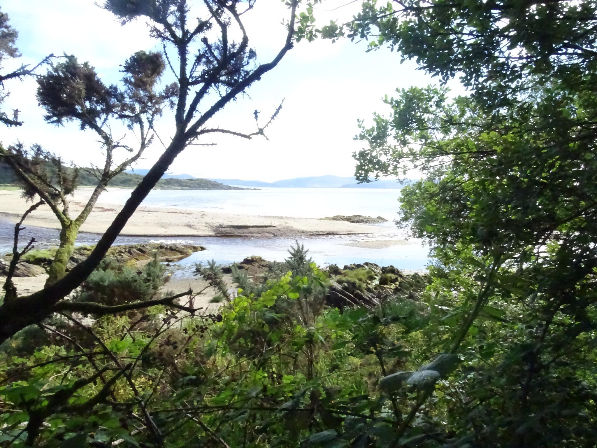 Saddell Bay  by wendysmithpatrick