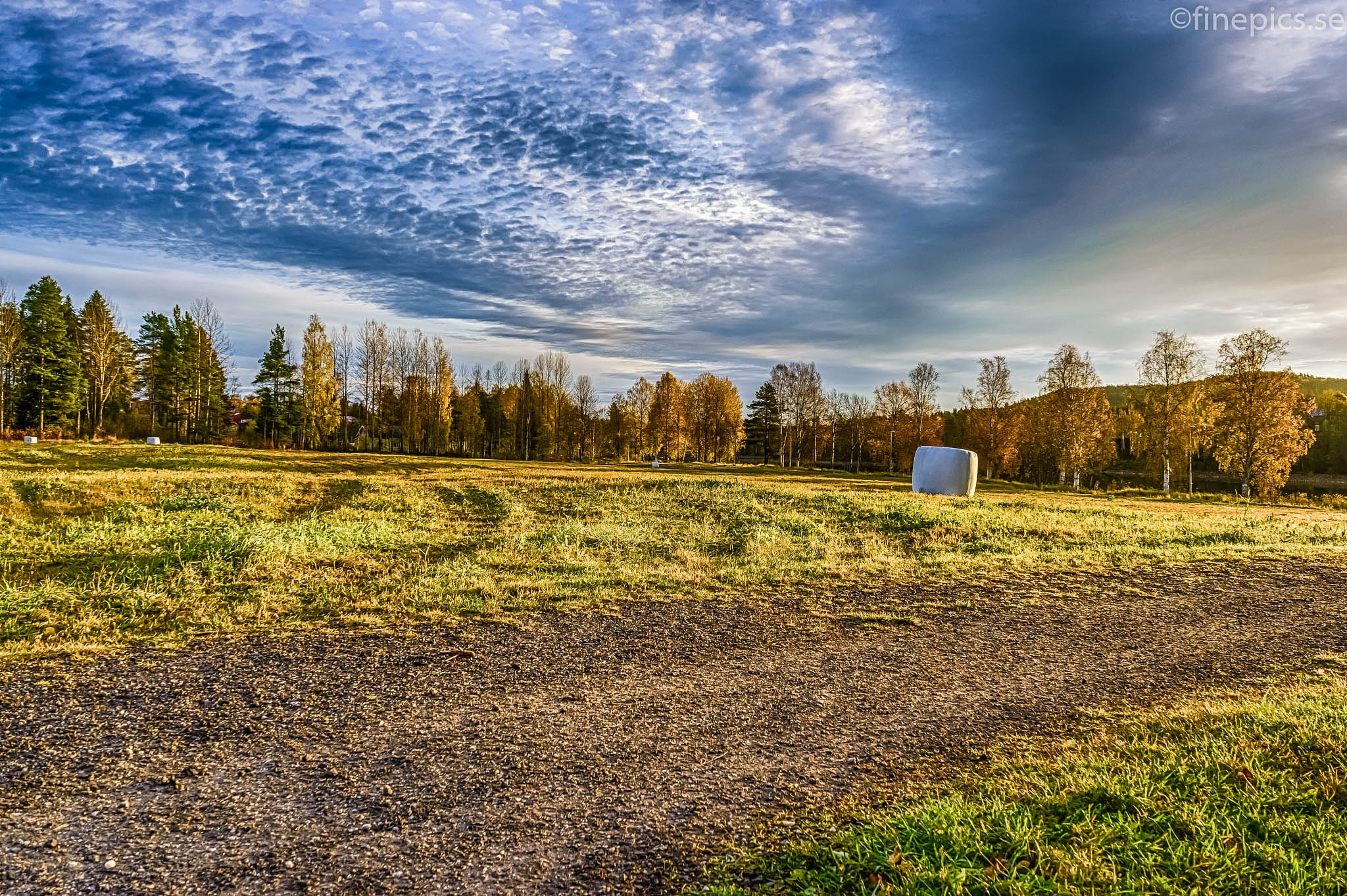 The other day! by Johan Bergenstråhle