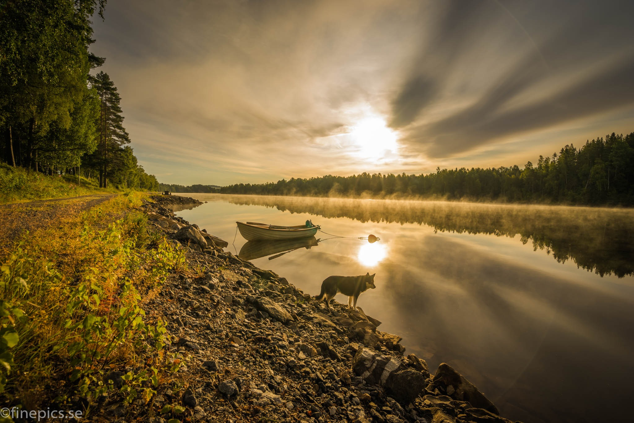 Just looking by Johan Bergenstråhle