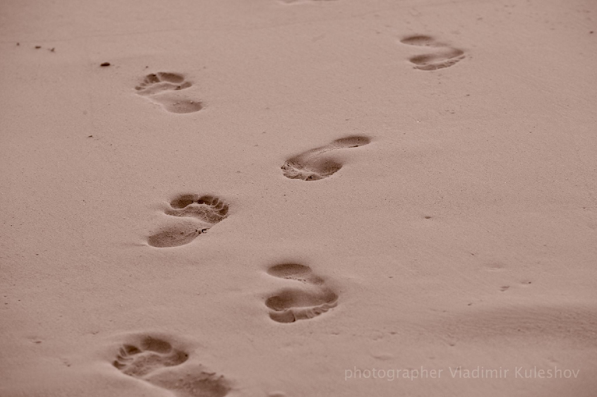 Steps by Vladimir Kuleshov