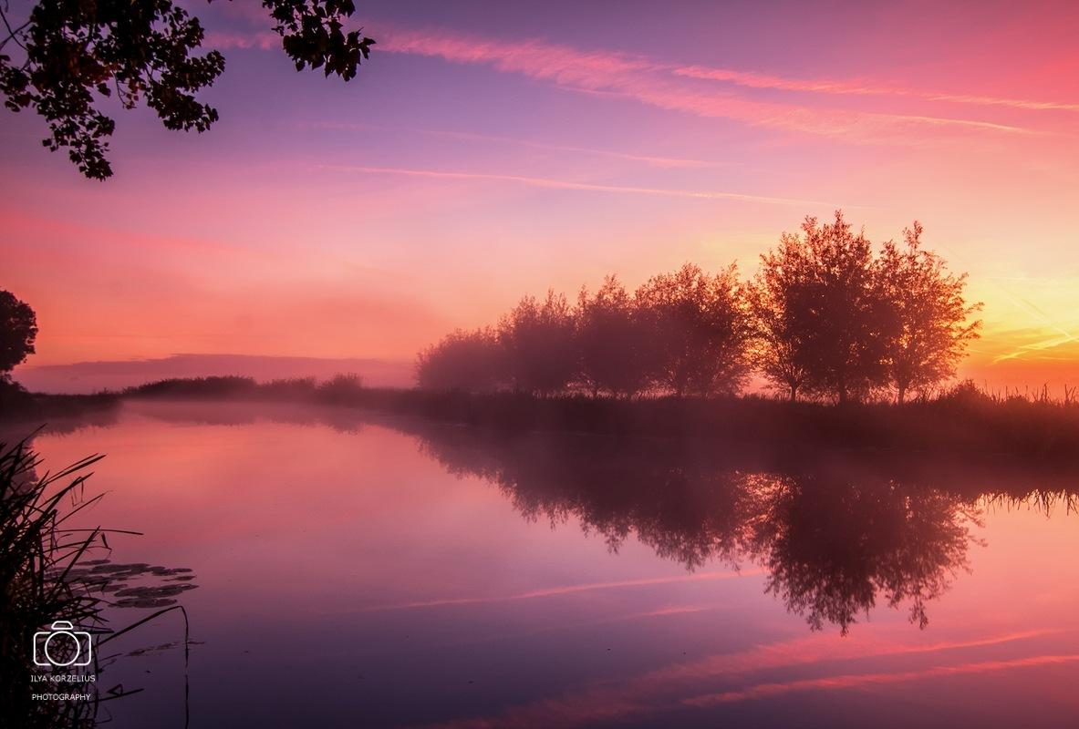 Magical morning by ilya.korzelius
