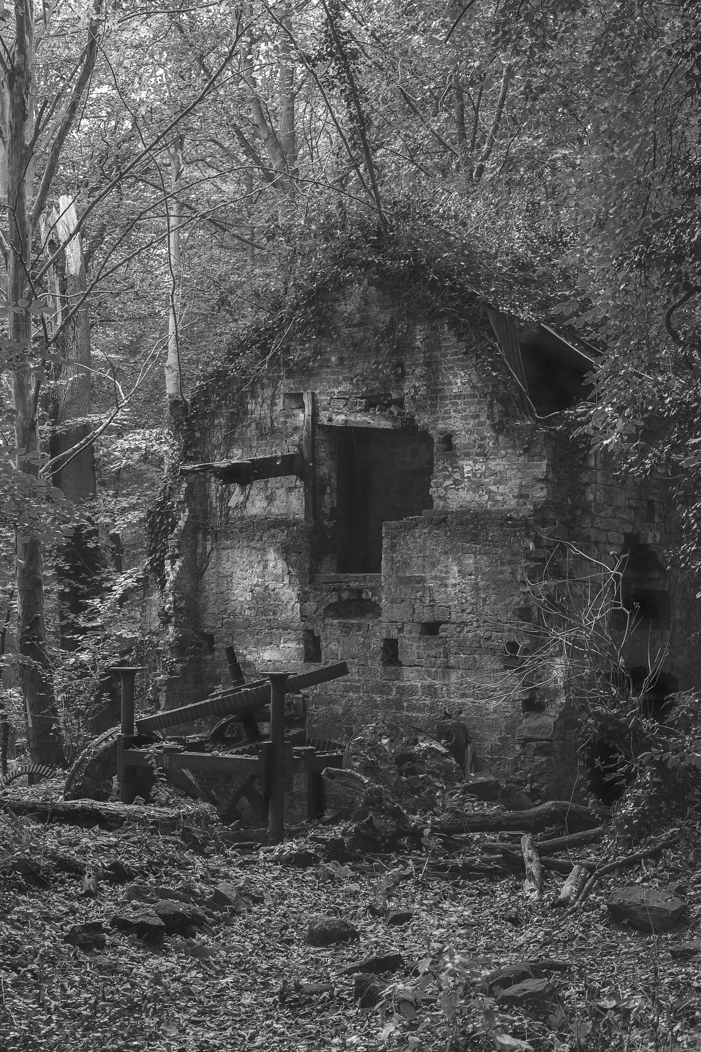 Corn Mill Ruins by charliedapper