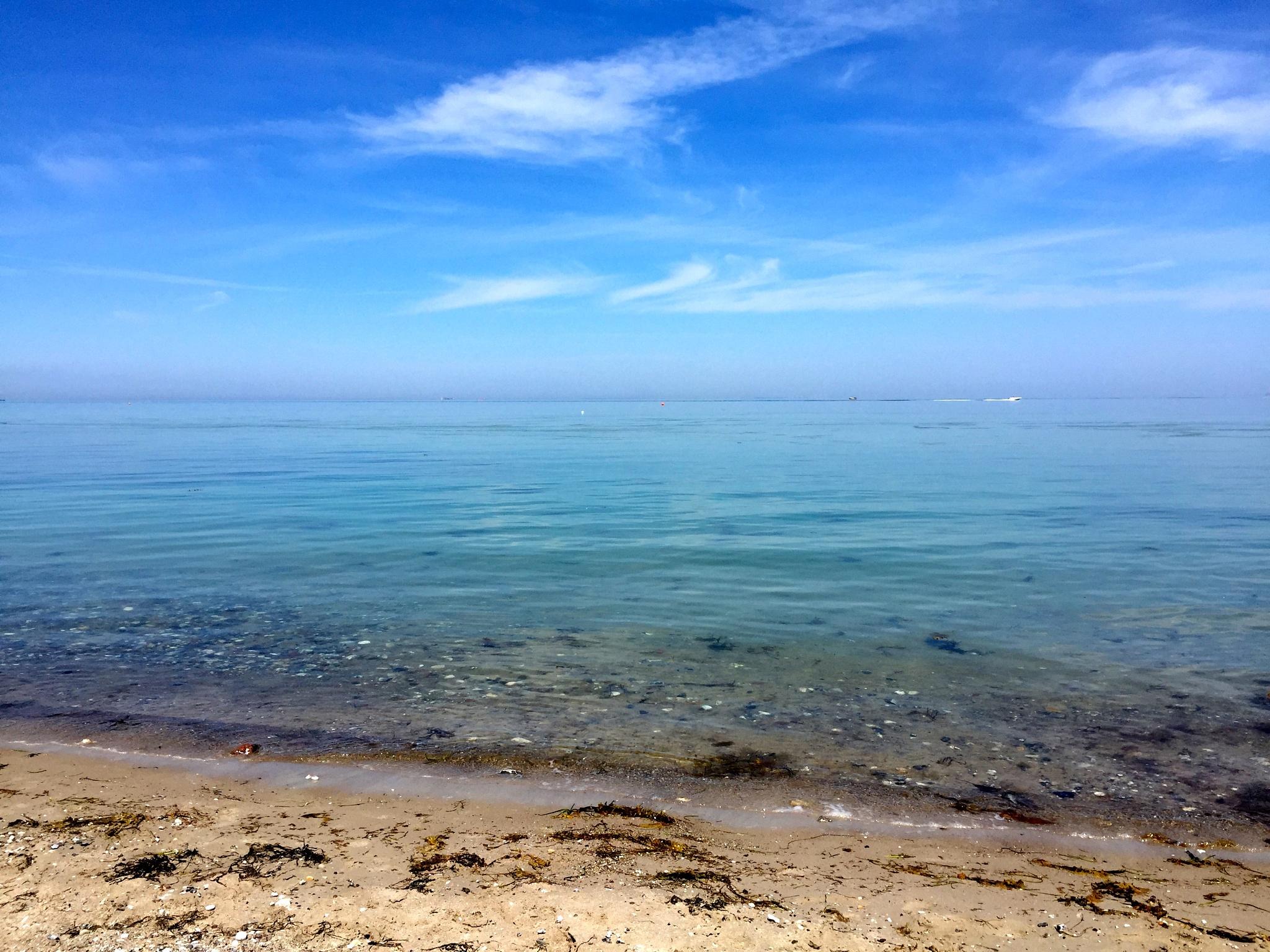 Photo in Sea and Sand #nordfyn #lifeisbeautiful #summer