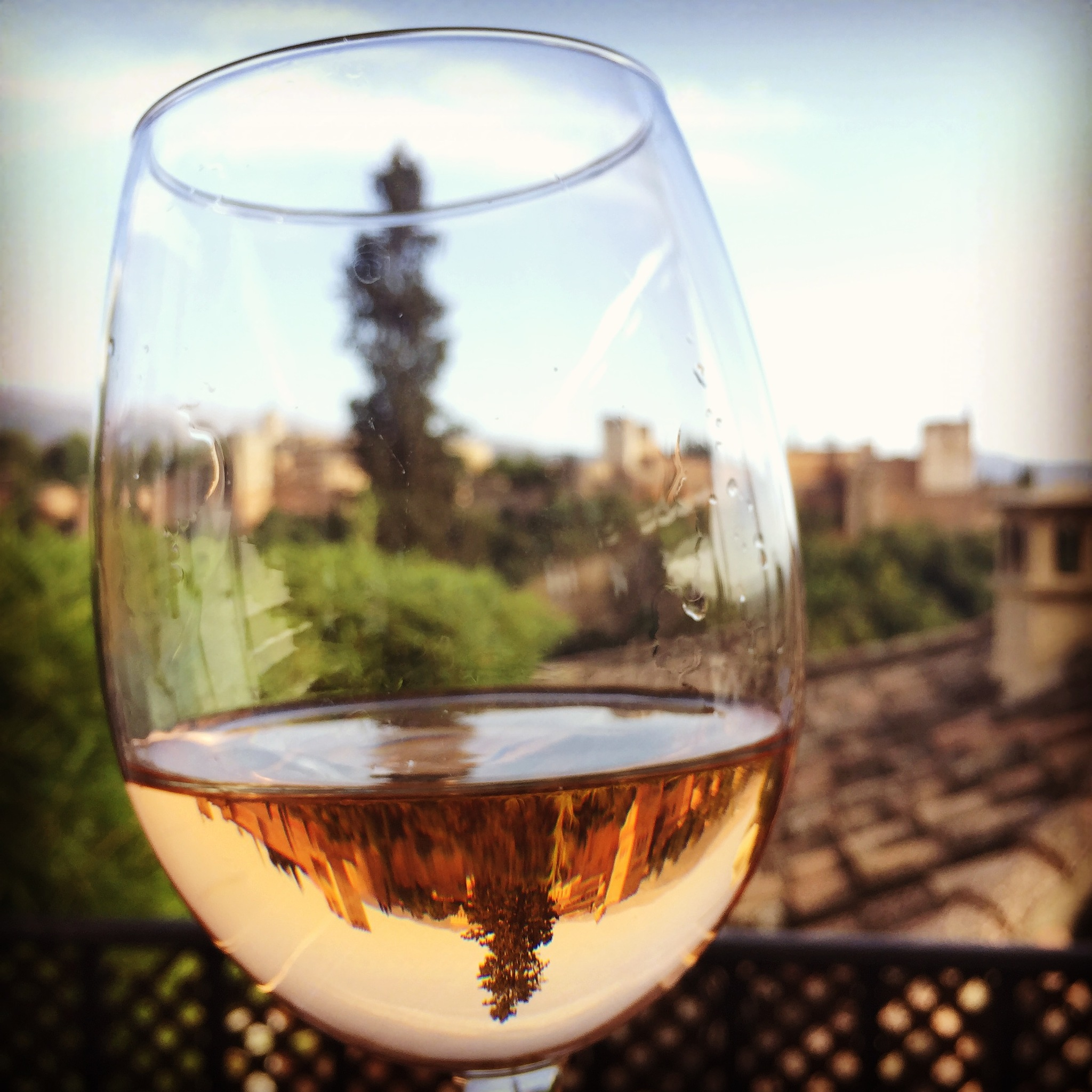 La Alhambra of Granada Spain seen through a glass of sweet Rose Wine  by Marlene Krebs