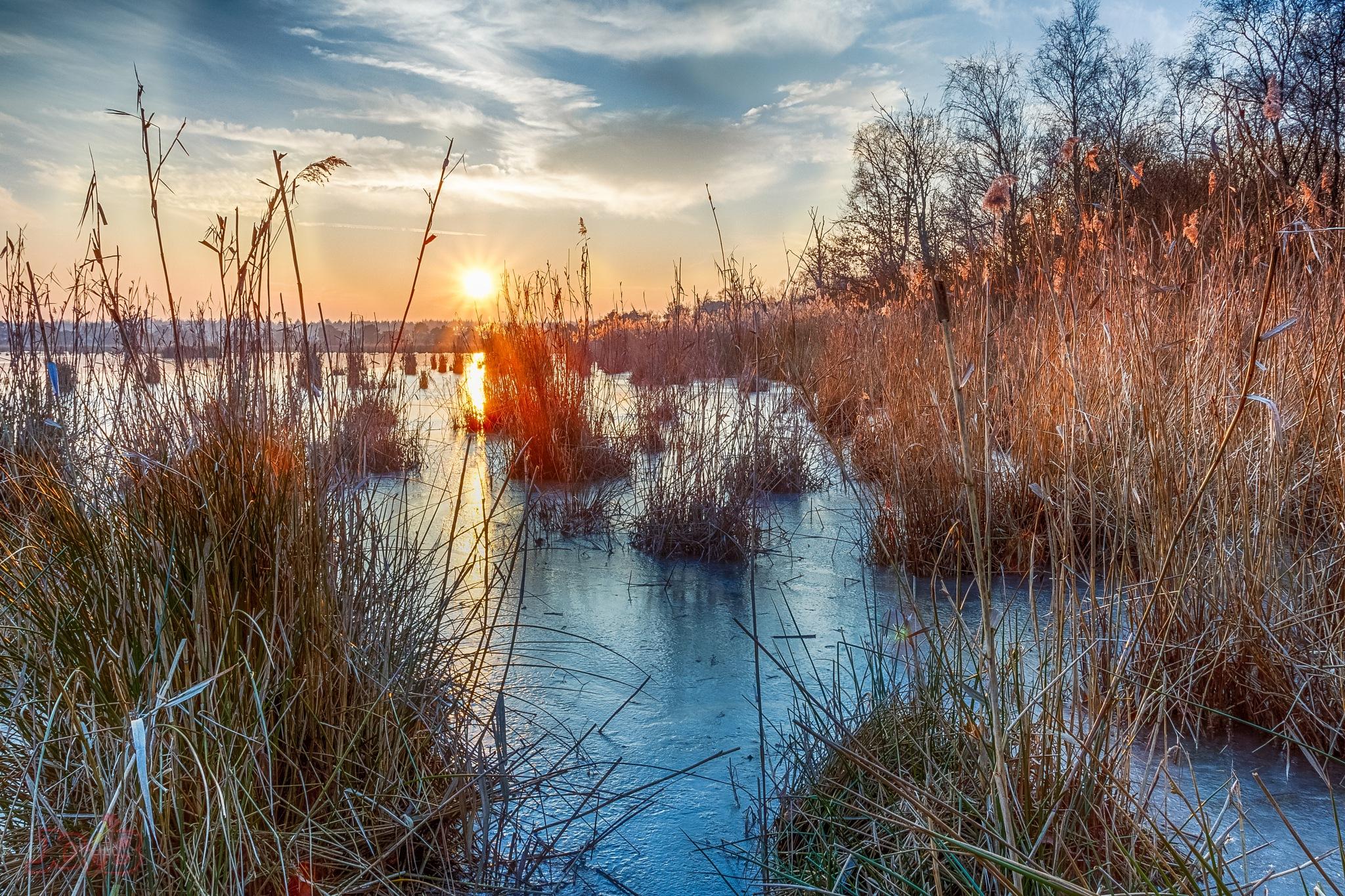 The frozen lake #1 by Jorge Botelho