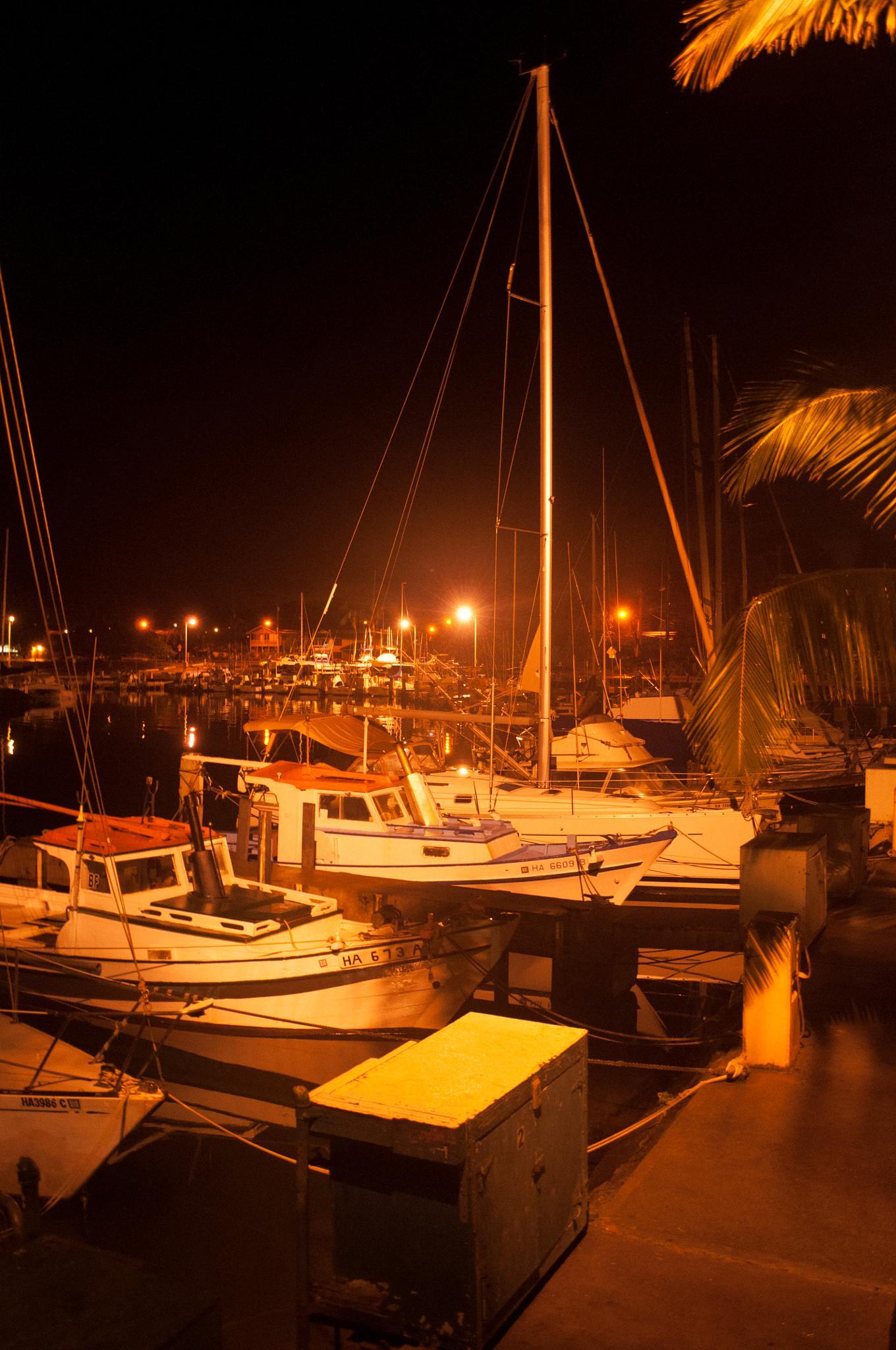 Night Marina by Sophia von Wrangell