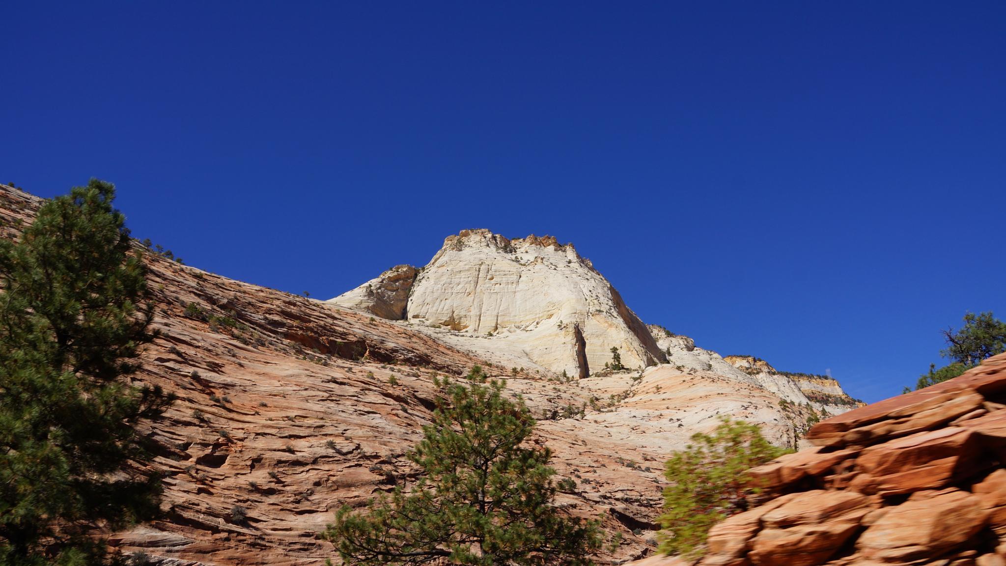 White Mountain in Arizona by Sophia von Wrangell