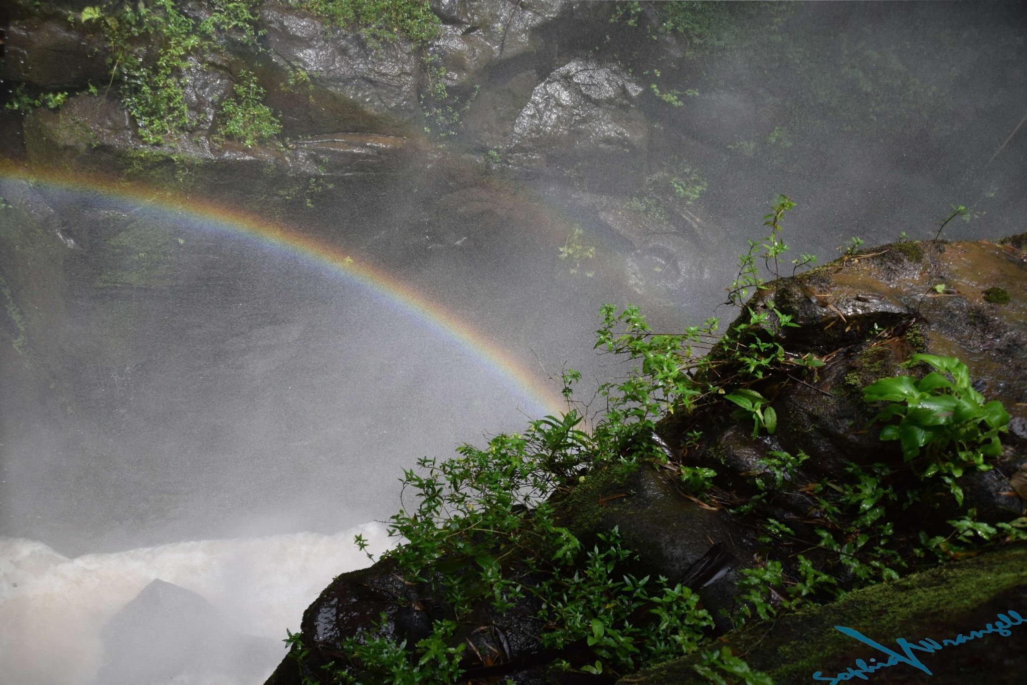 Rainbow caused by a random sun ray by Sophia von Wrangell