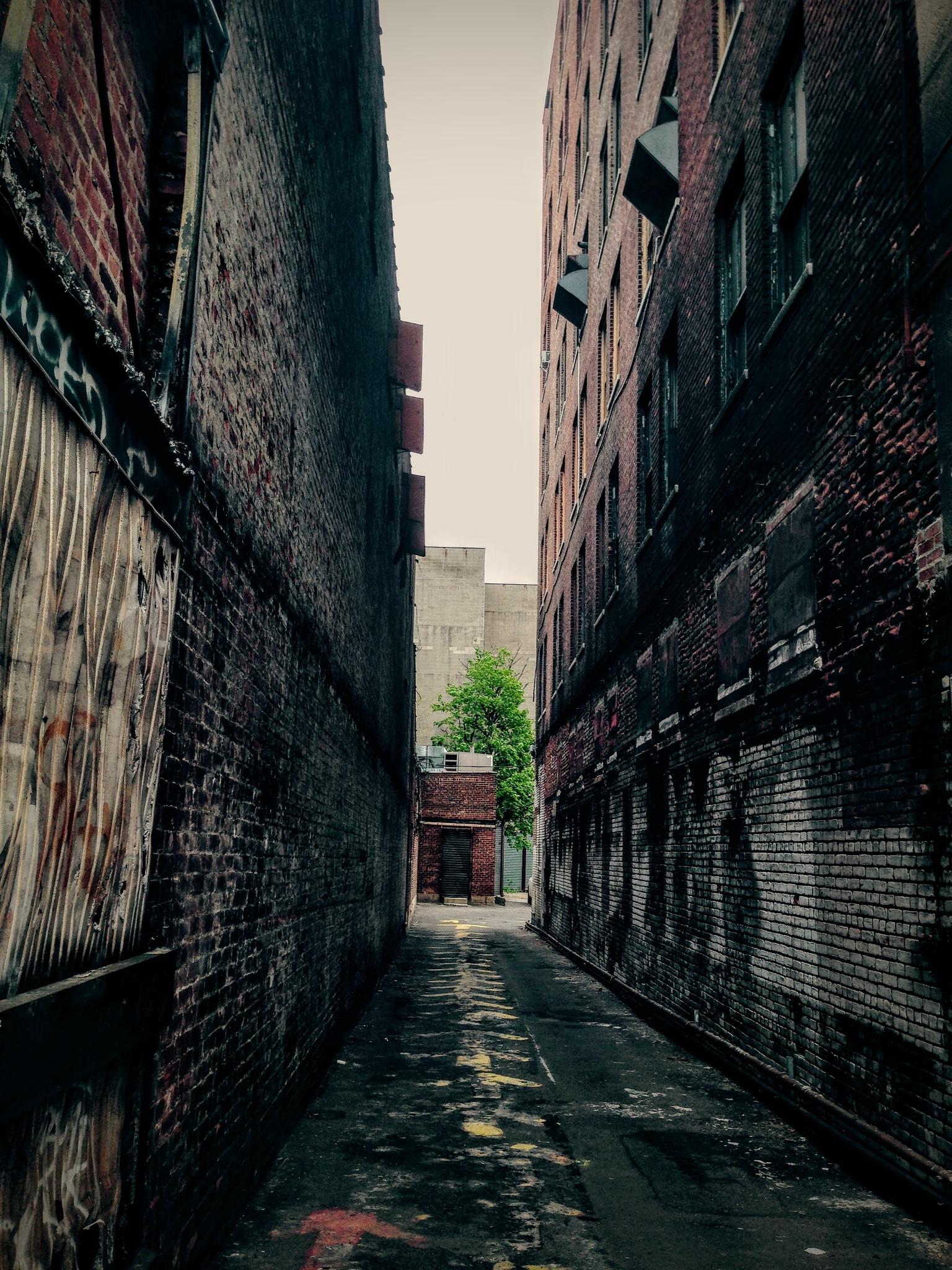 Photo in Street Photography #nyc #jamaica #dark #alley #street