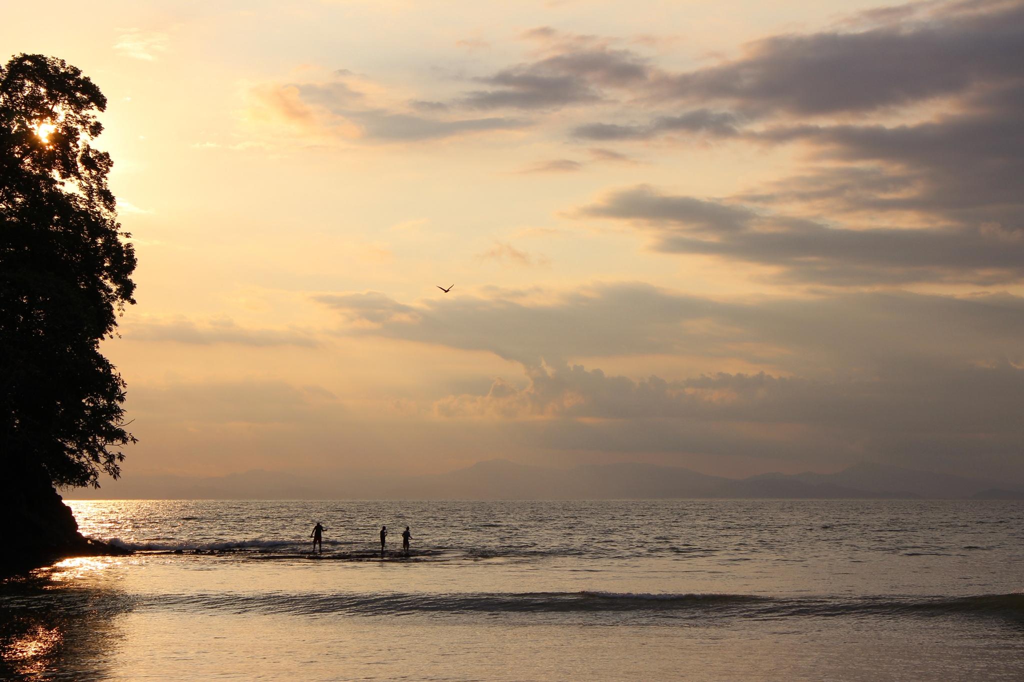 Last ray of light in the Pacific  by Benedito Luiz Arruda