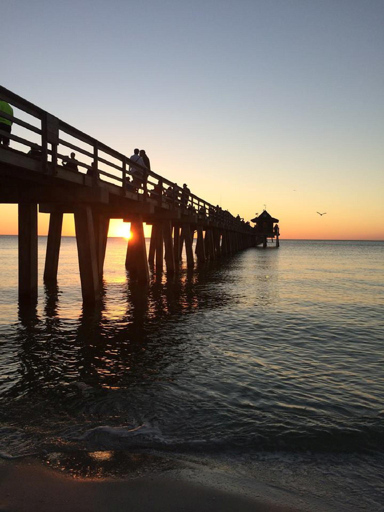 Naples FL. Pier at sunset by annieboland1954