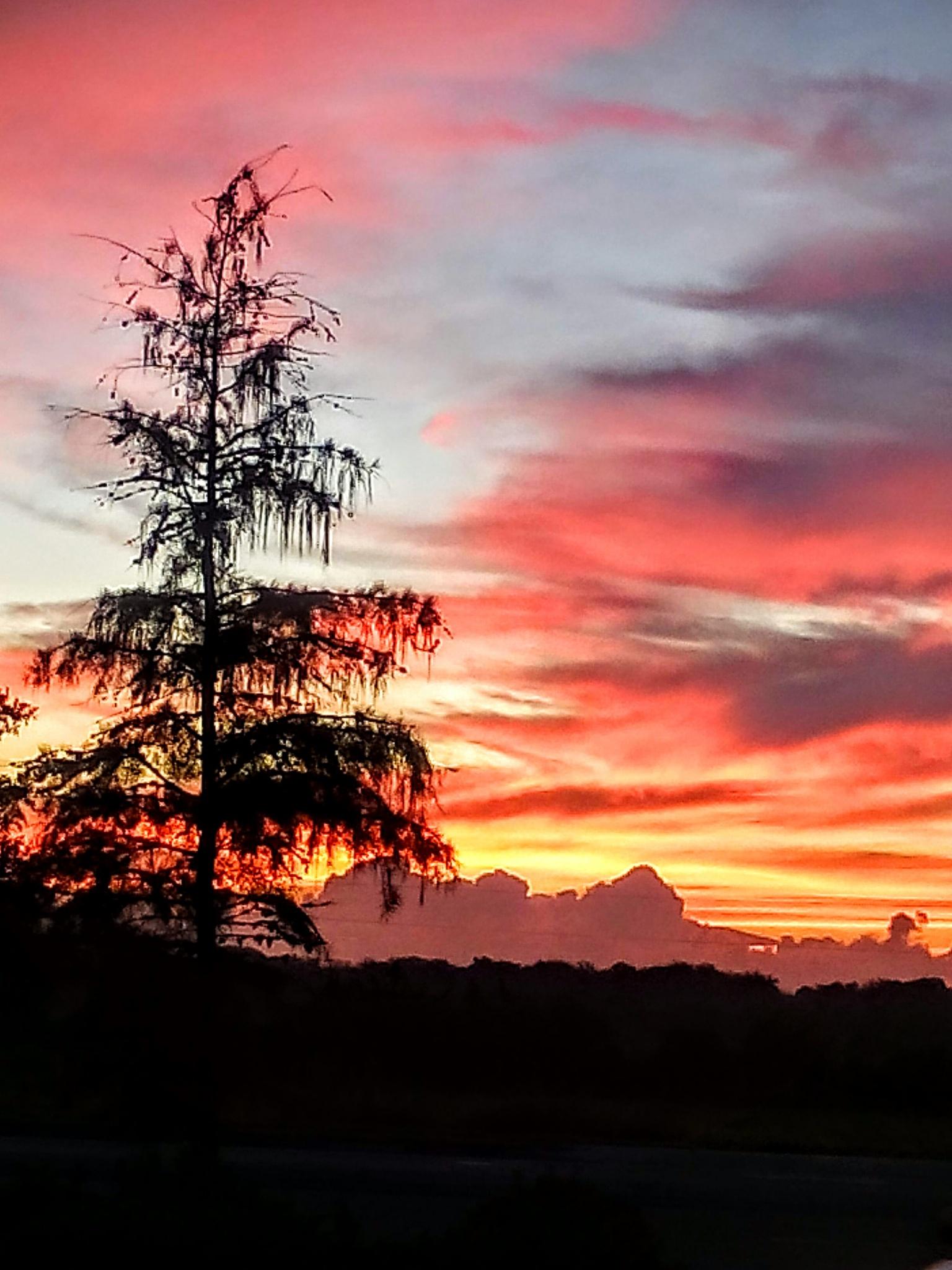 Sunrise over Sanford by arisutton