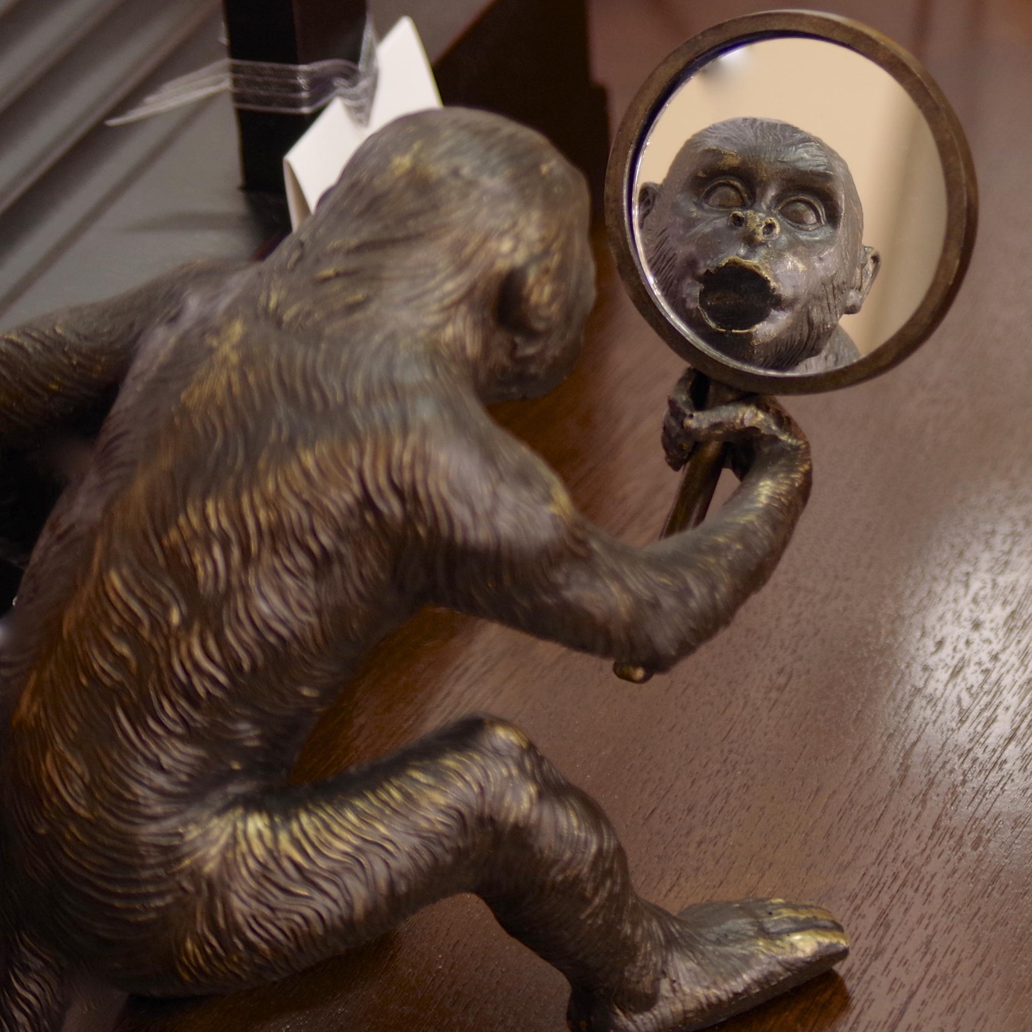 Monkey in the Mirror by cee.lewars