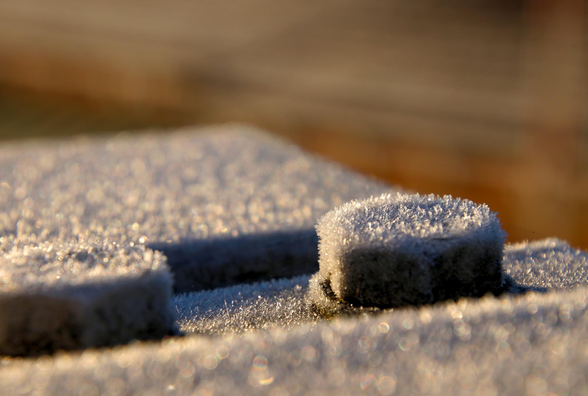 The Head is Frozen by cln.wvr