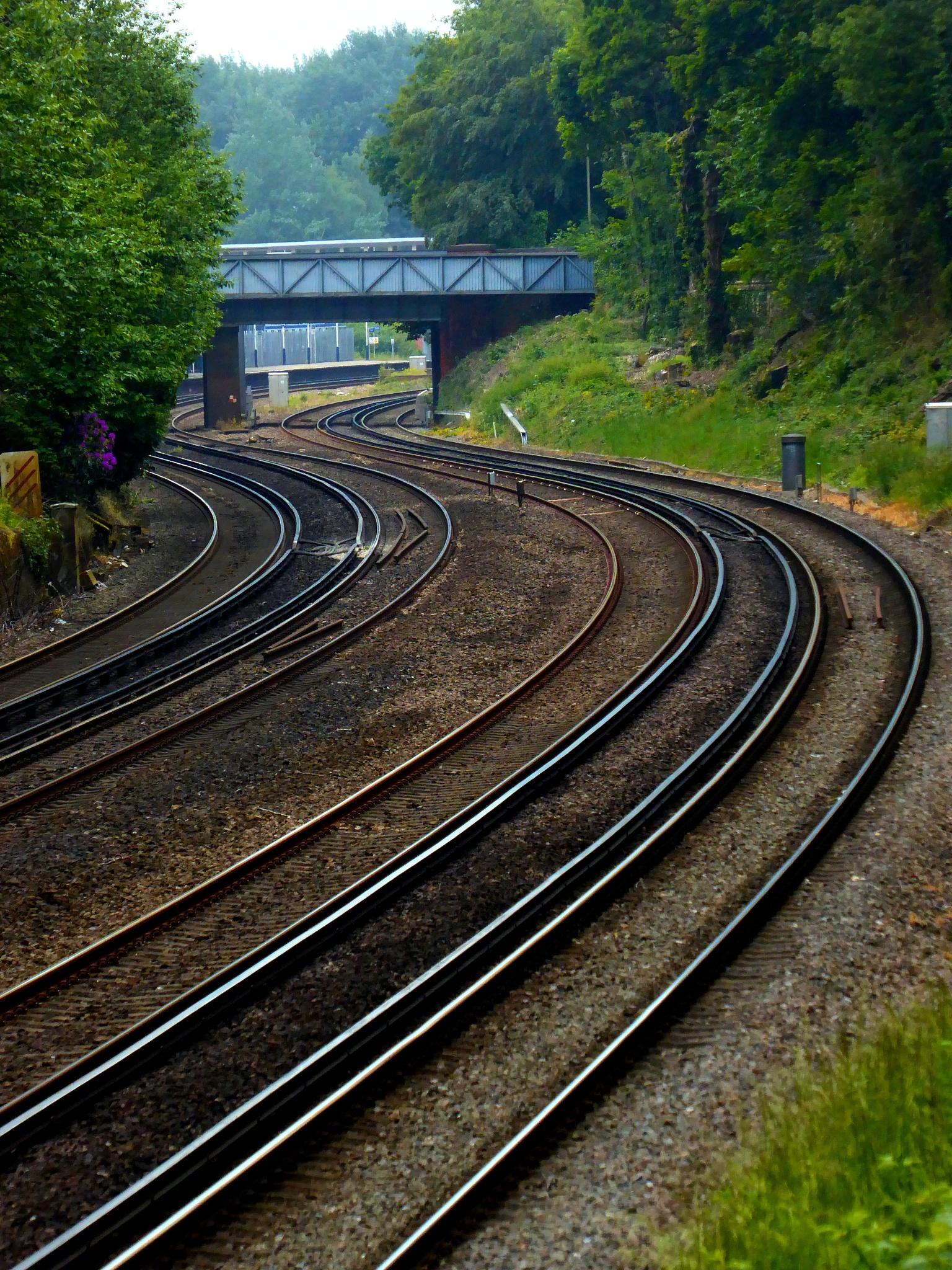 Photo in Travel #railway #tracks #curves #brisge