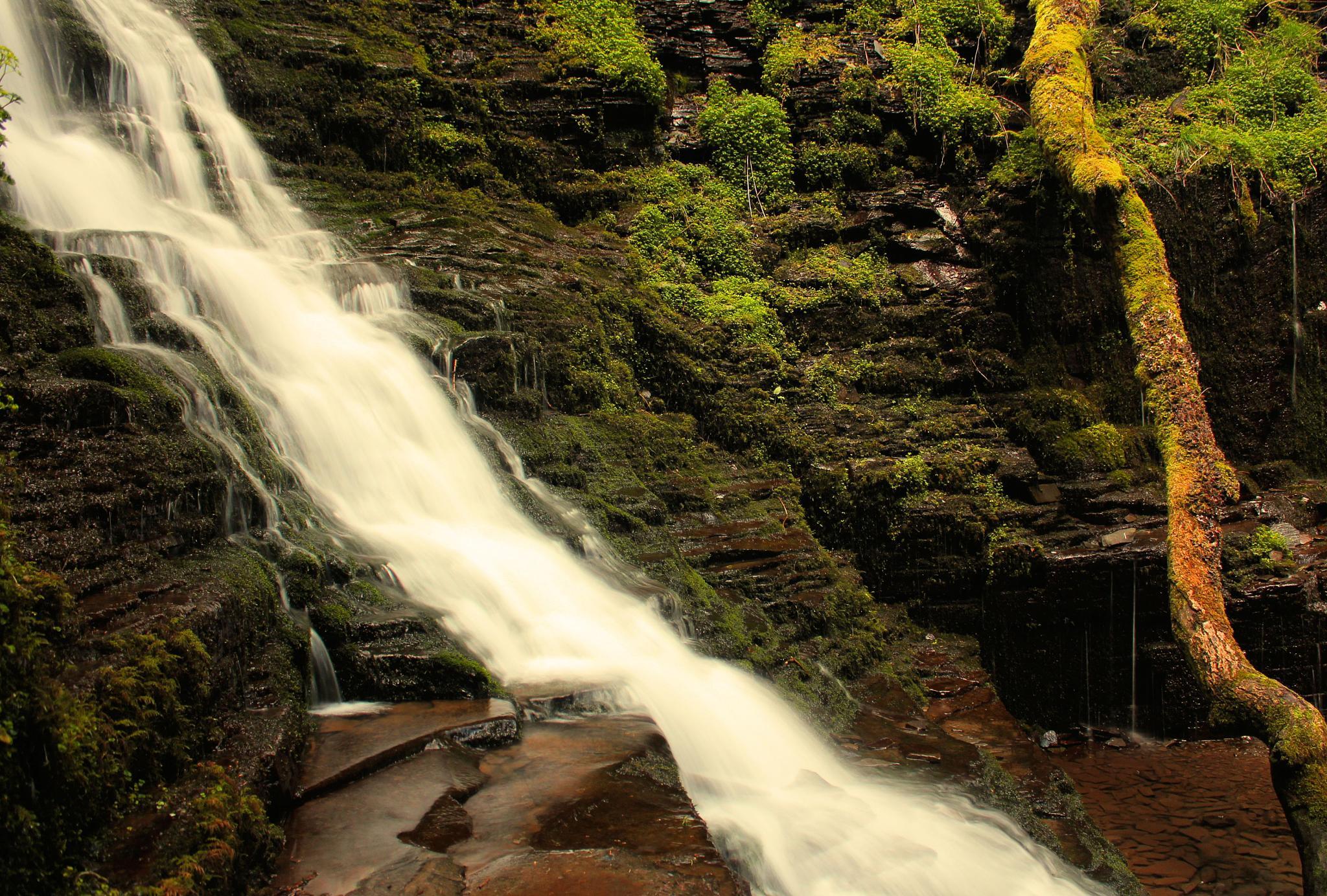 Mossy Falls by cln.wvr
