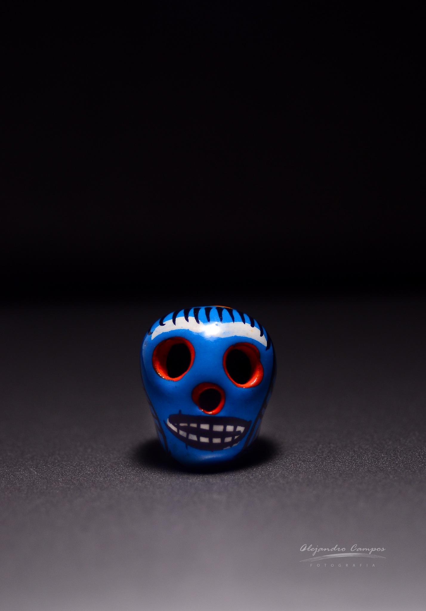 Día de los Muertos by alejandrocamposfotografia