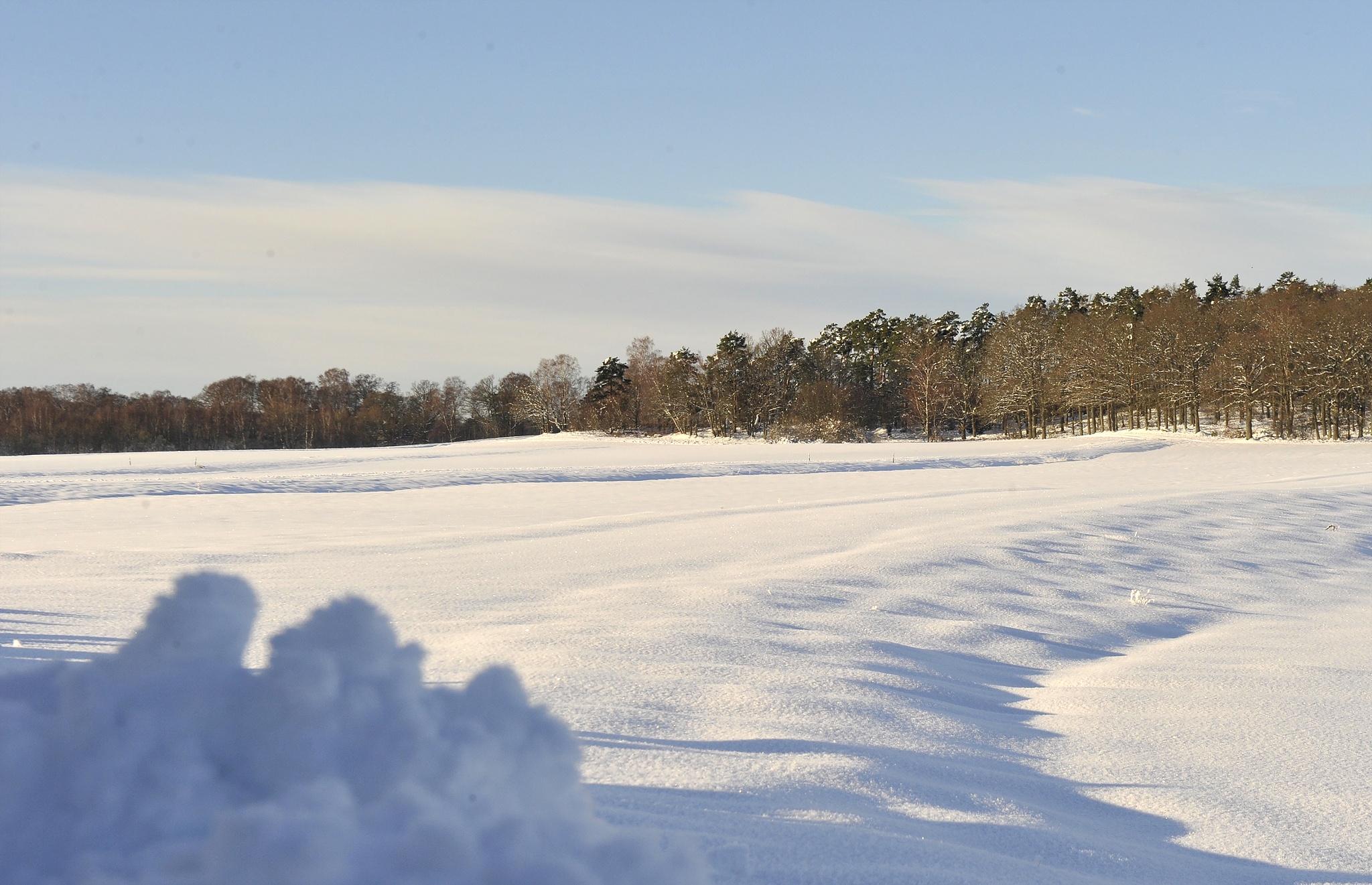 Winterland by bo.j.carlsson