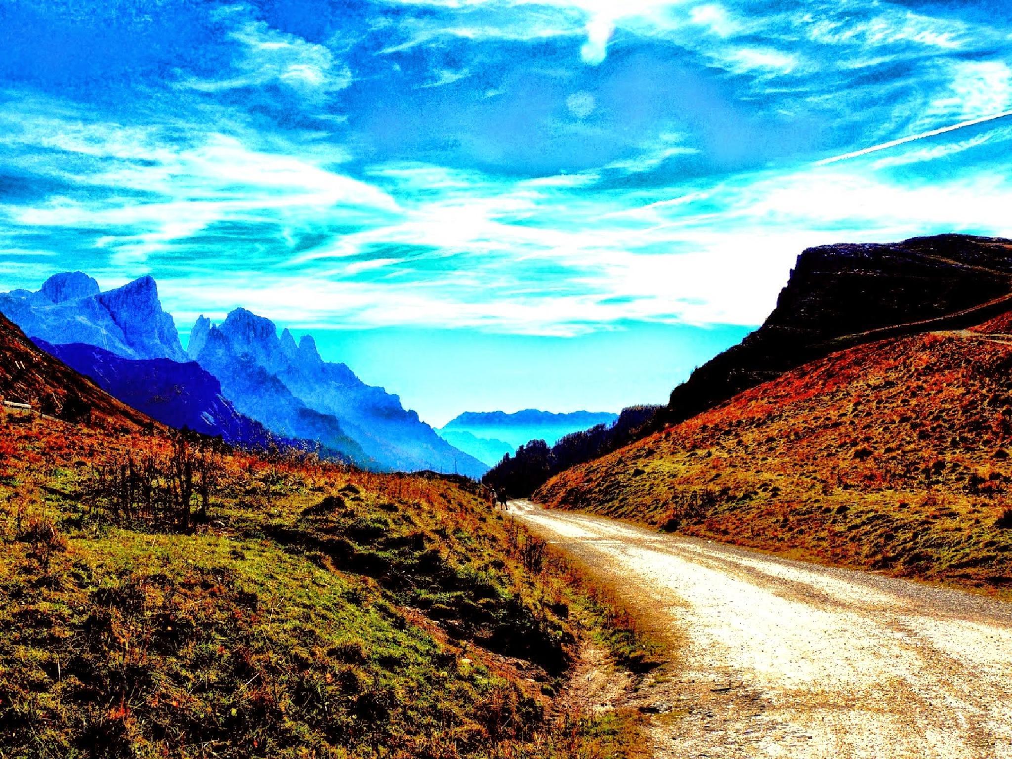 Mountain road by Damiano Mozzato