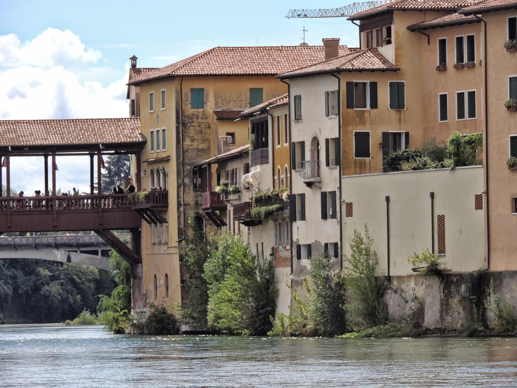 Wood Bridge by Damiano Mozzato
