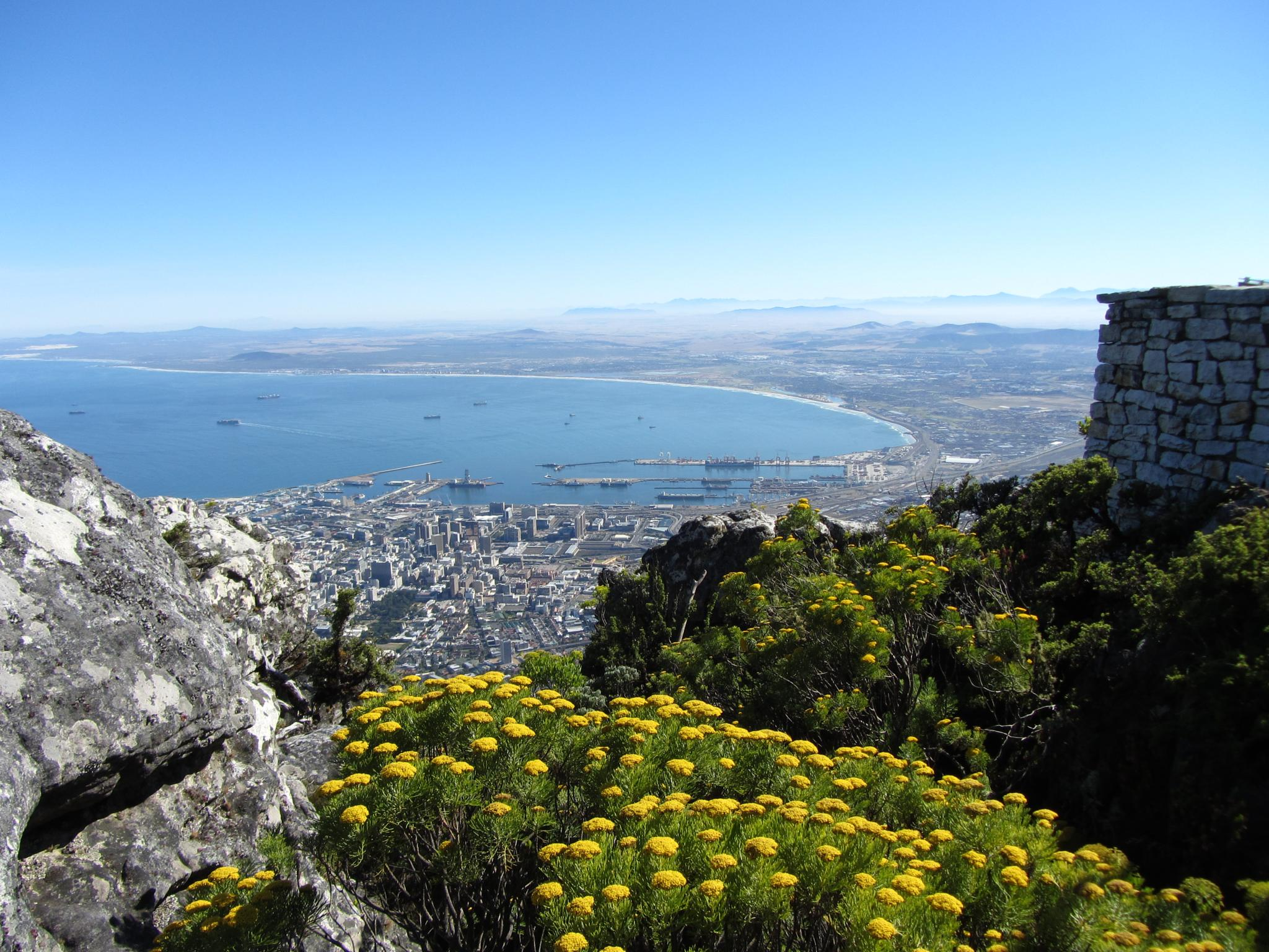 Table Mountain - Cape Town by karin.leroux.94