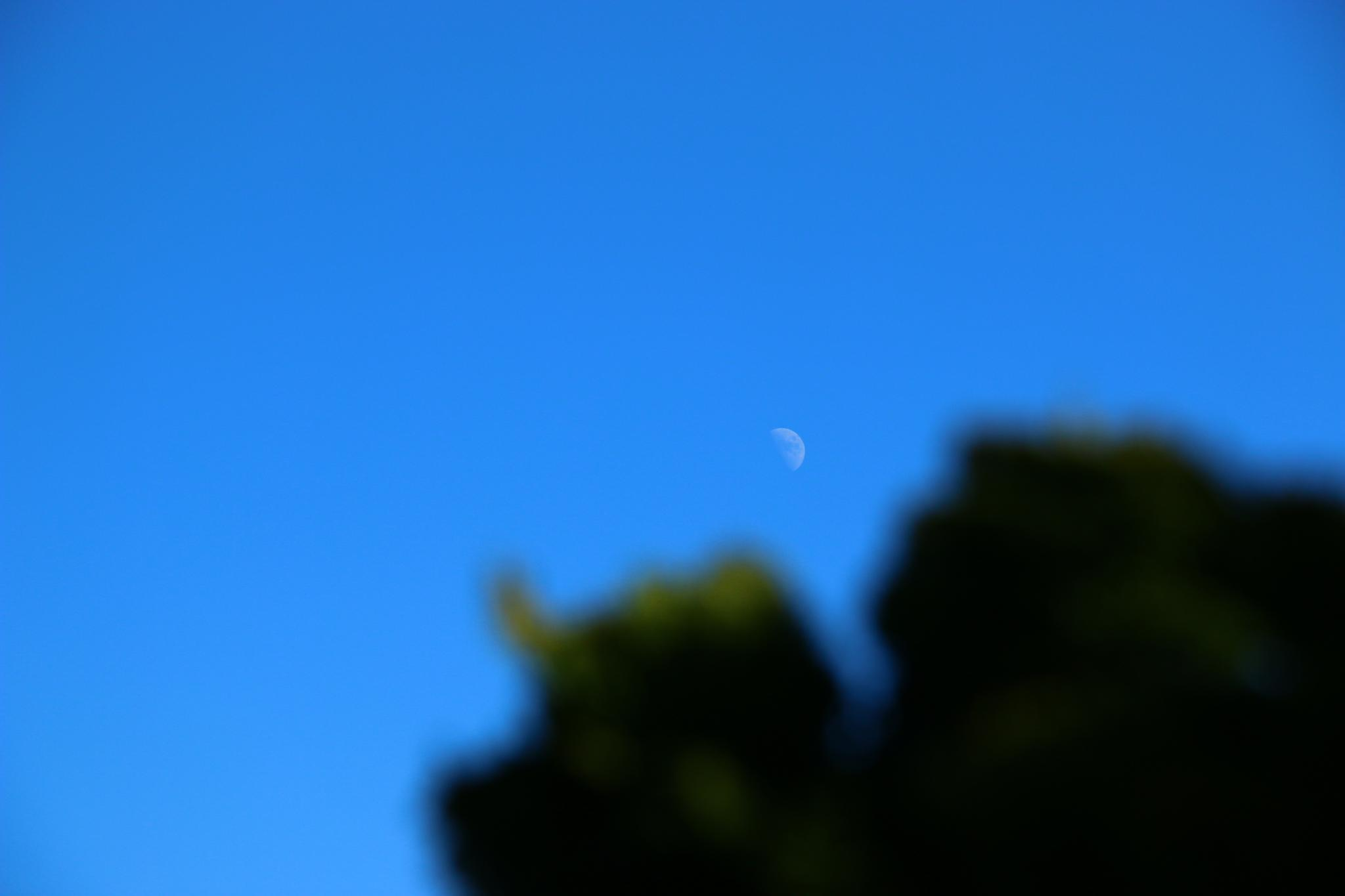 The moon in bright daylight by Karsten Larsen