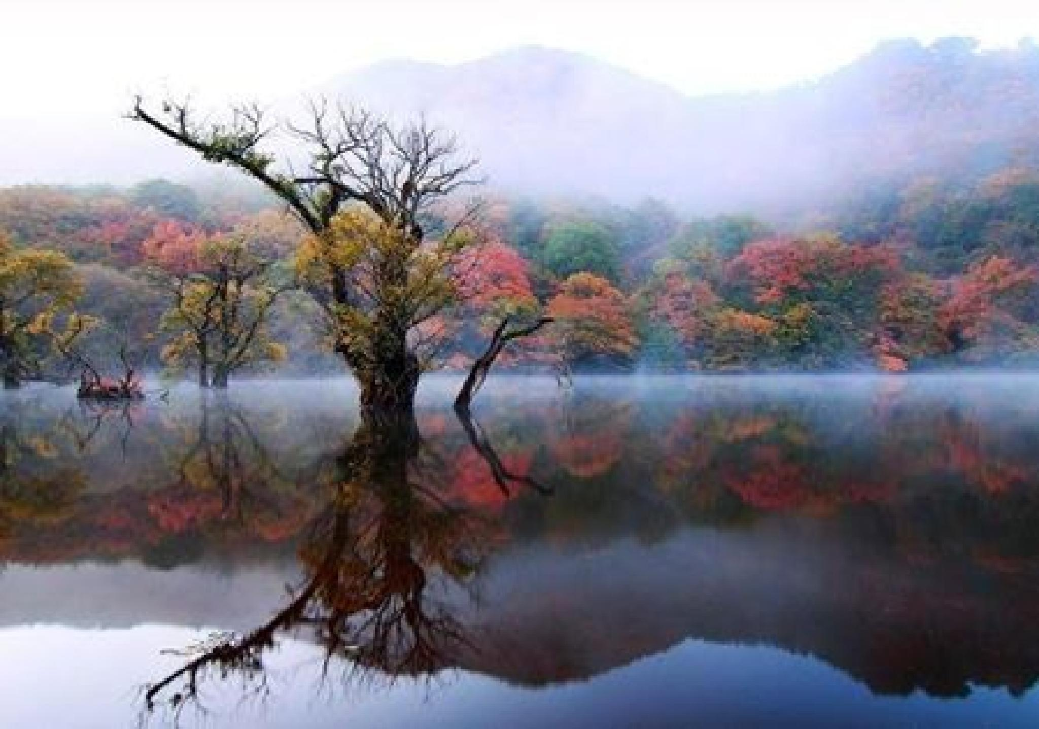 Fantasy Lake by susan.bailey.1