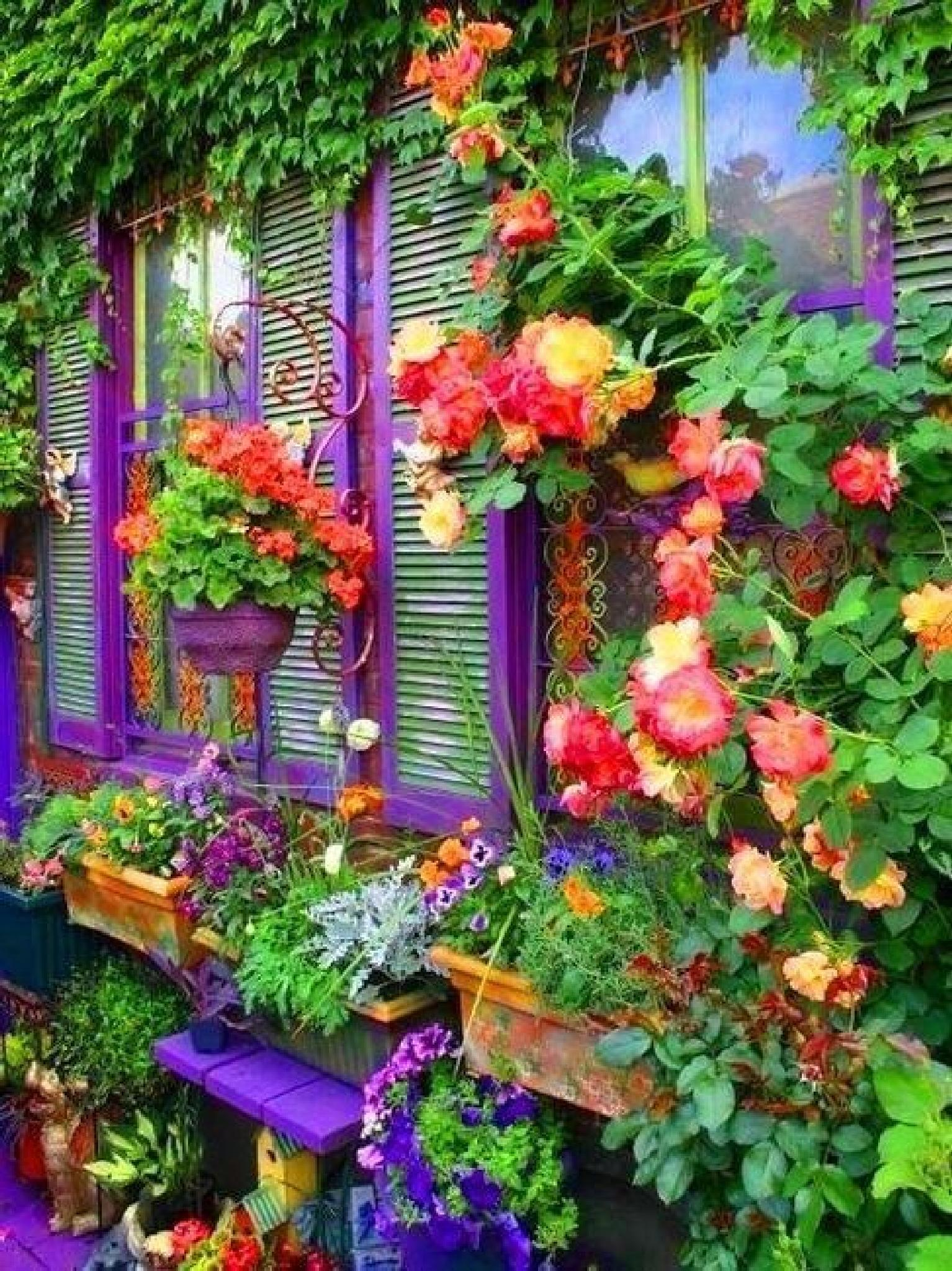 Extremely Colorful Patio by susan.bailey.1