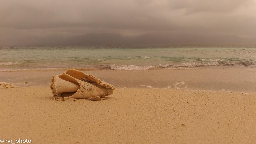 On the beach by Rafael