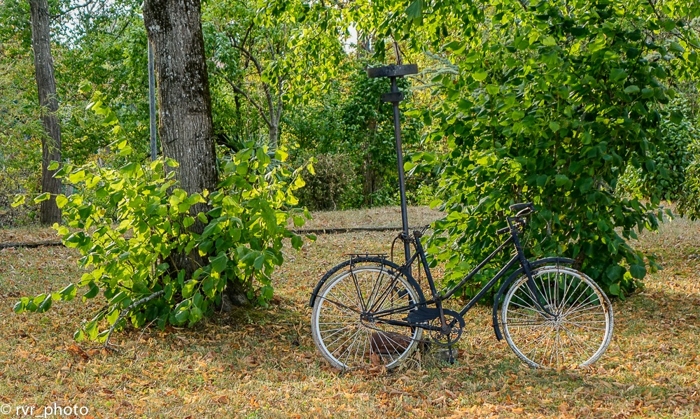 Old Bicycle by Rafael