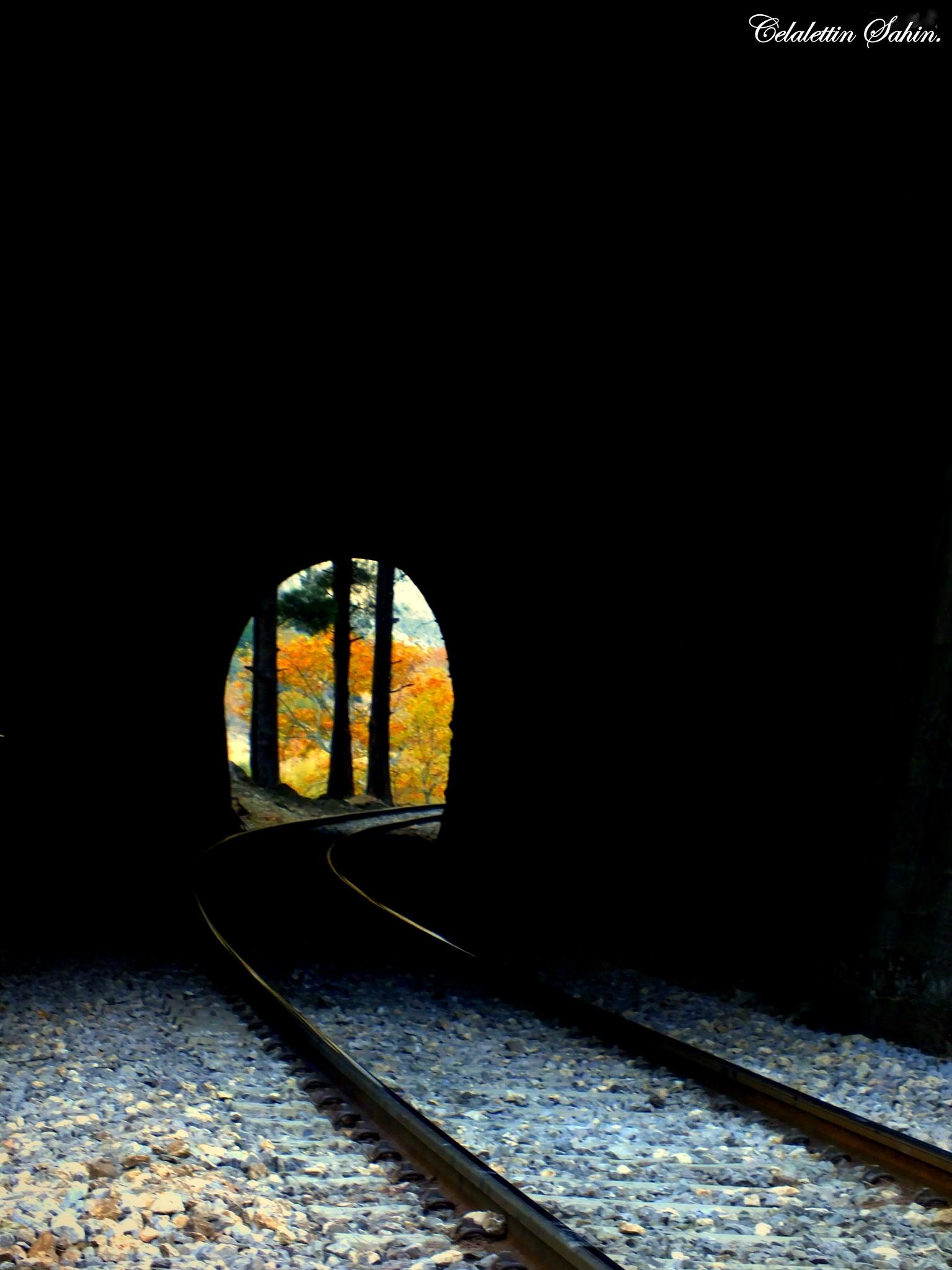 The mystery of the rails by Celalettin Şahin