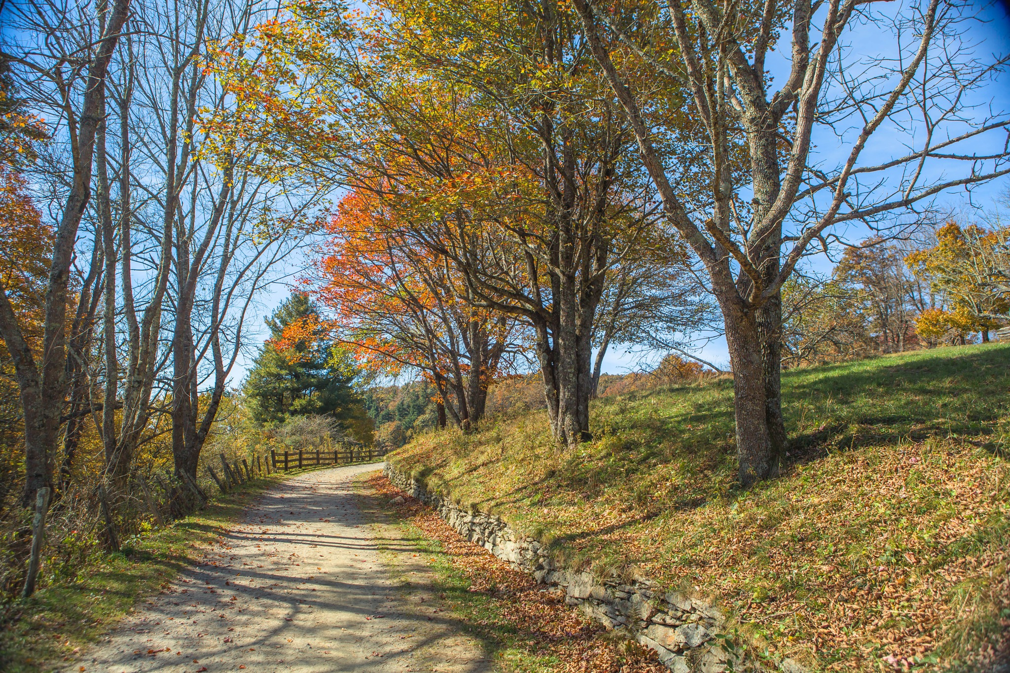 Autum's Road by timothybell1800