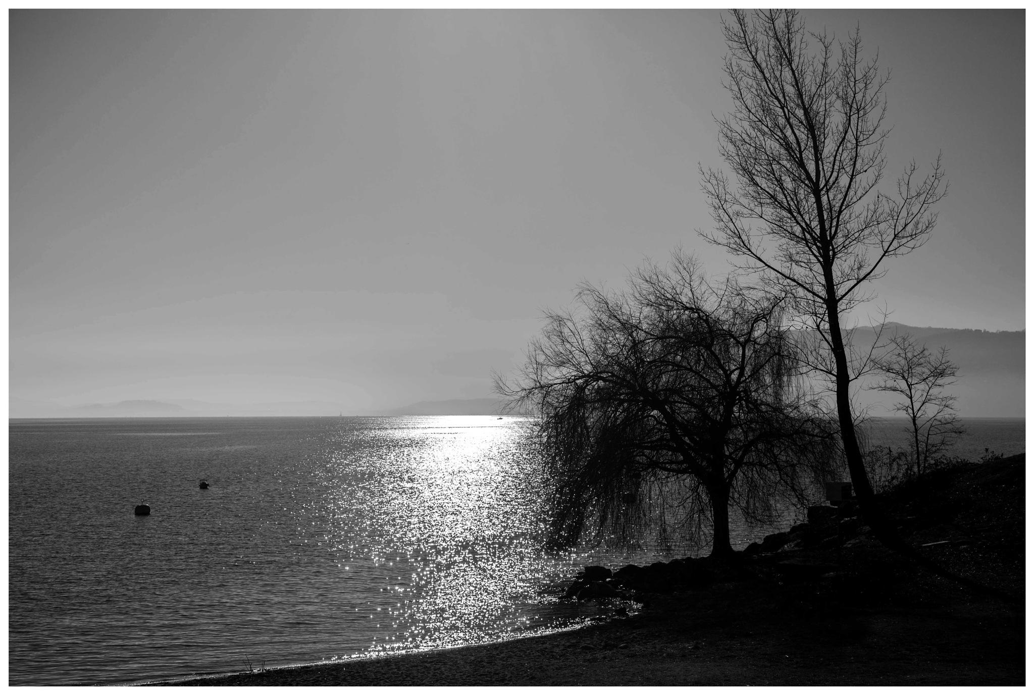 lago maggiore by bcorech
