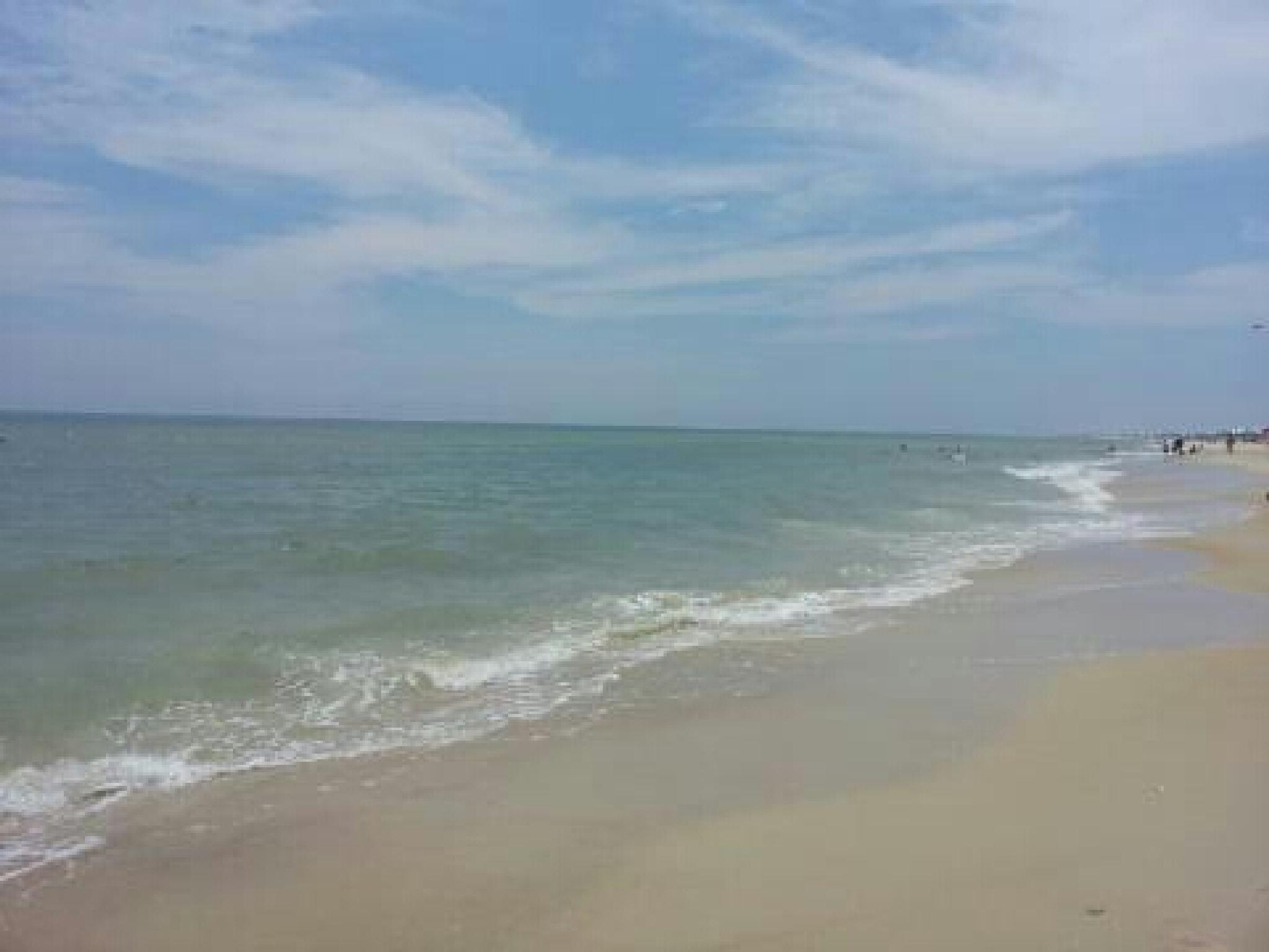 Florida beach by stephensgal