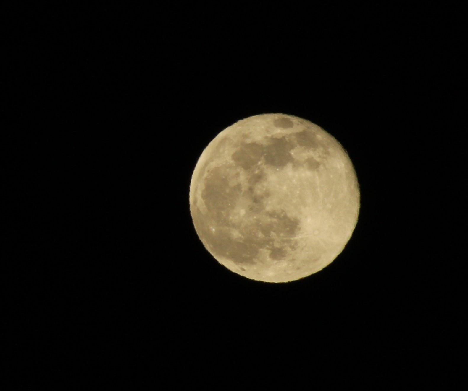 Desert Moon Palm Desert CA by T.Neil Walker